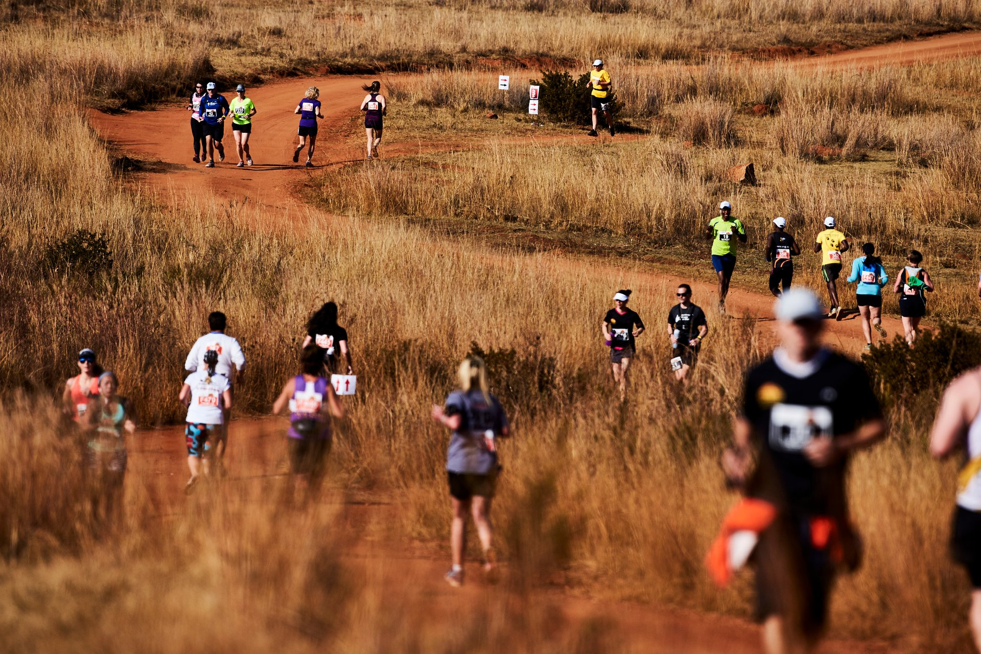 Best time to see Big Five Marathon in South Africa 2020