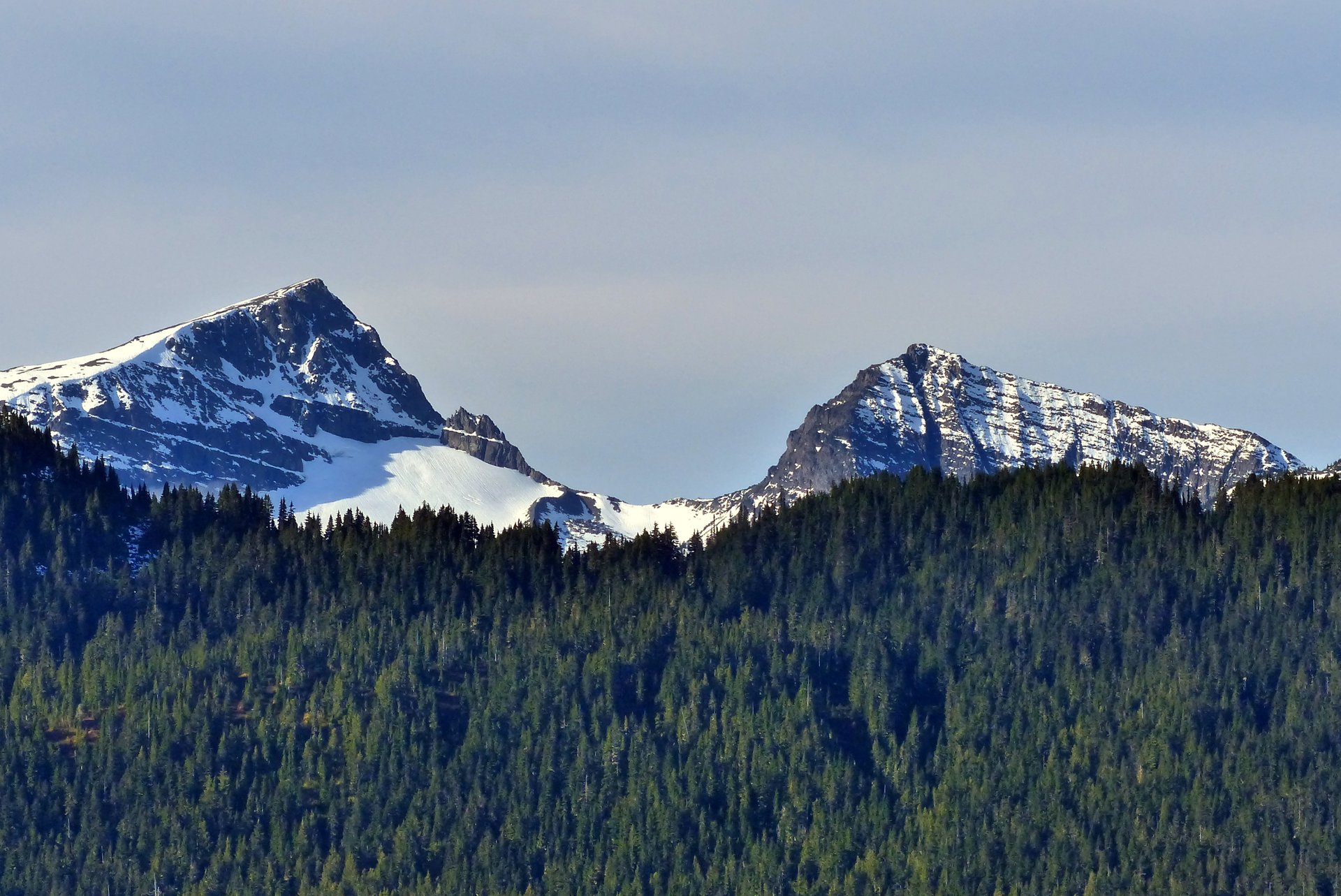 Mt Albert Edward in British Columbia 2020 - Best Time
