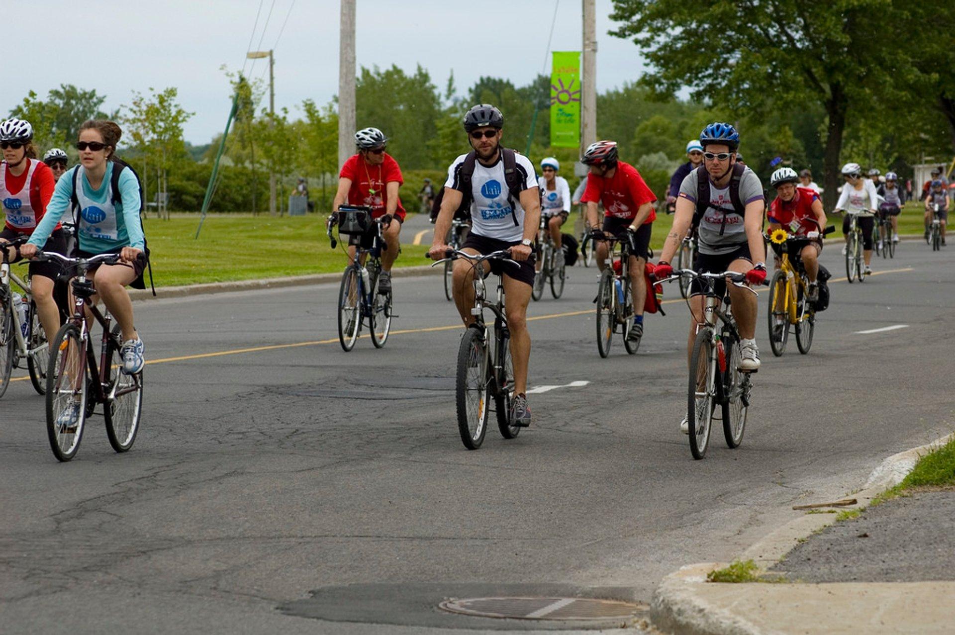 Tour de l'Île de Montréal in Montreal - Best Season 2020