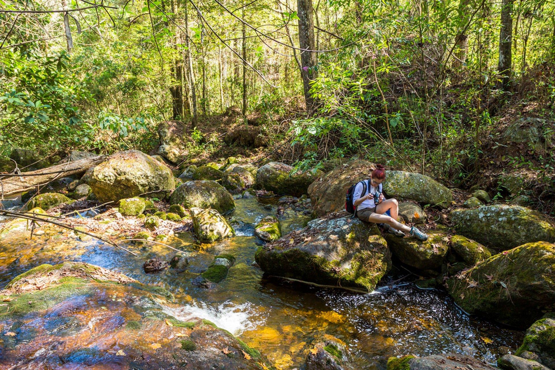 Hiking in Honduras 2020 - Best Time