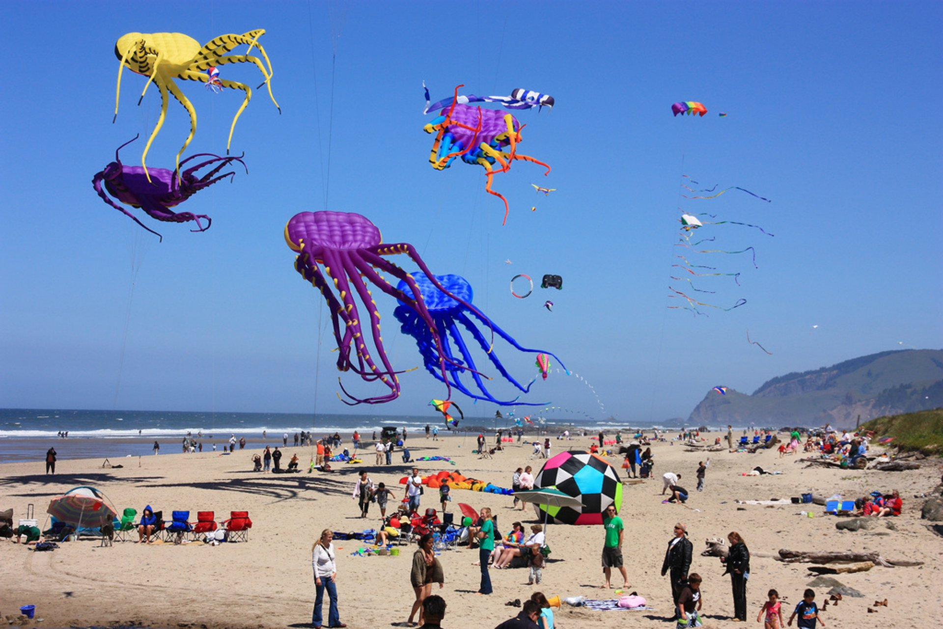 Lincoln City Kite Festival in Portland 2020 - Best Time
