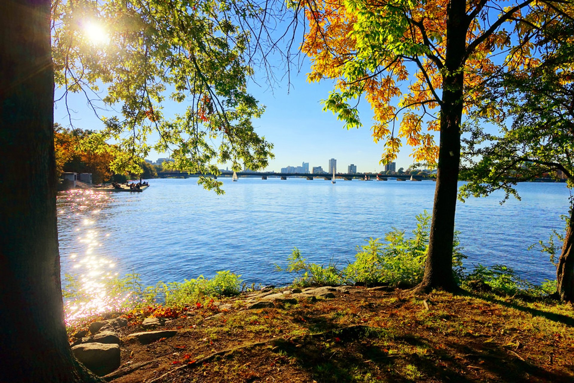 Charles River 2020