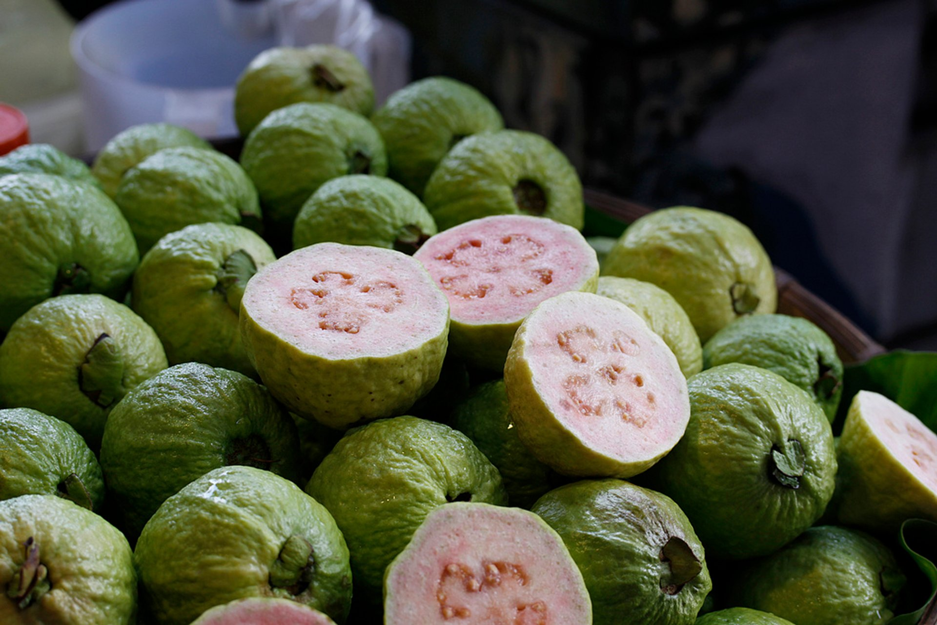 Best time for Guava in Taiwan
