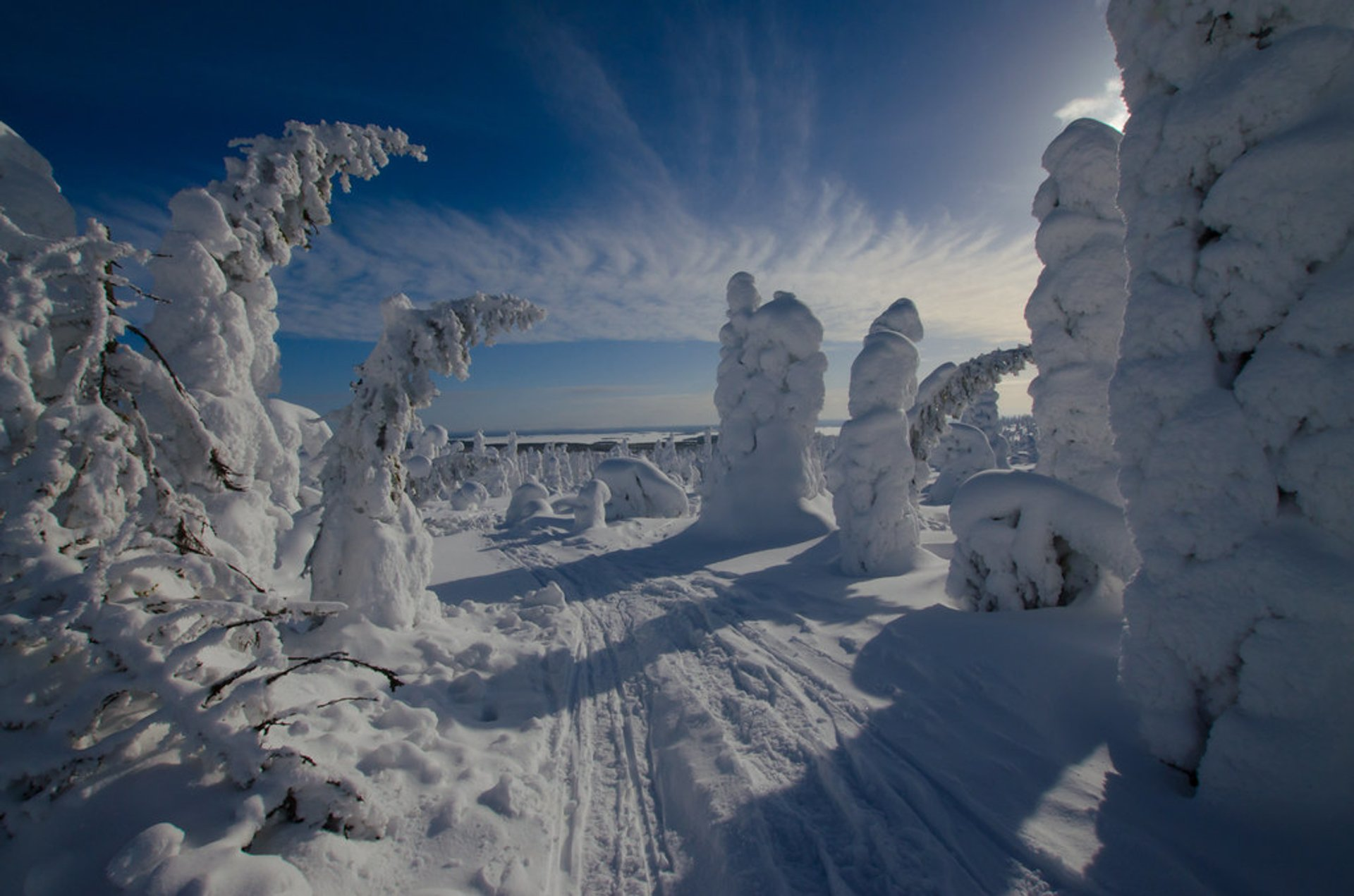 Tykky in Riisitunturi National Park in Finland - Best Season 2020