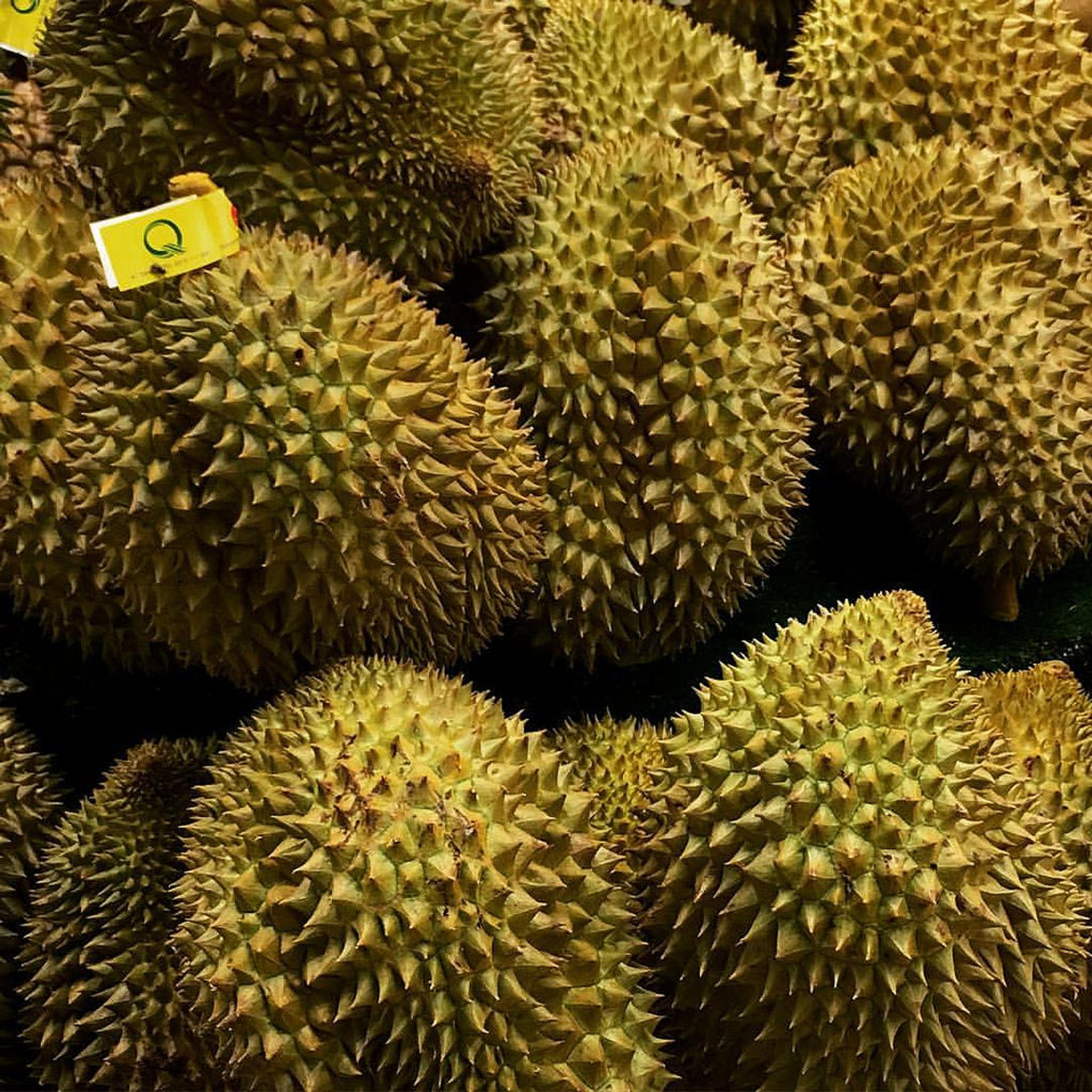 Durian in Taiwan 2020 - Best Time