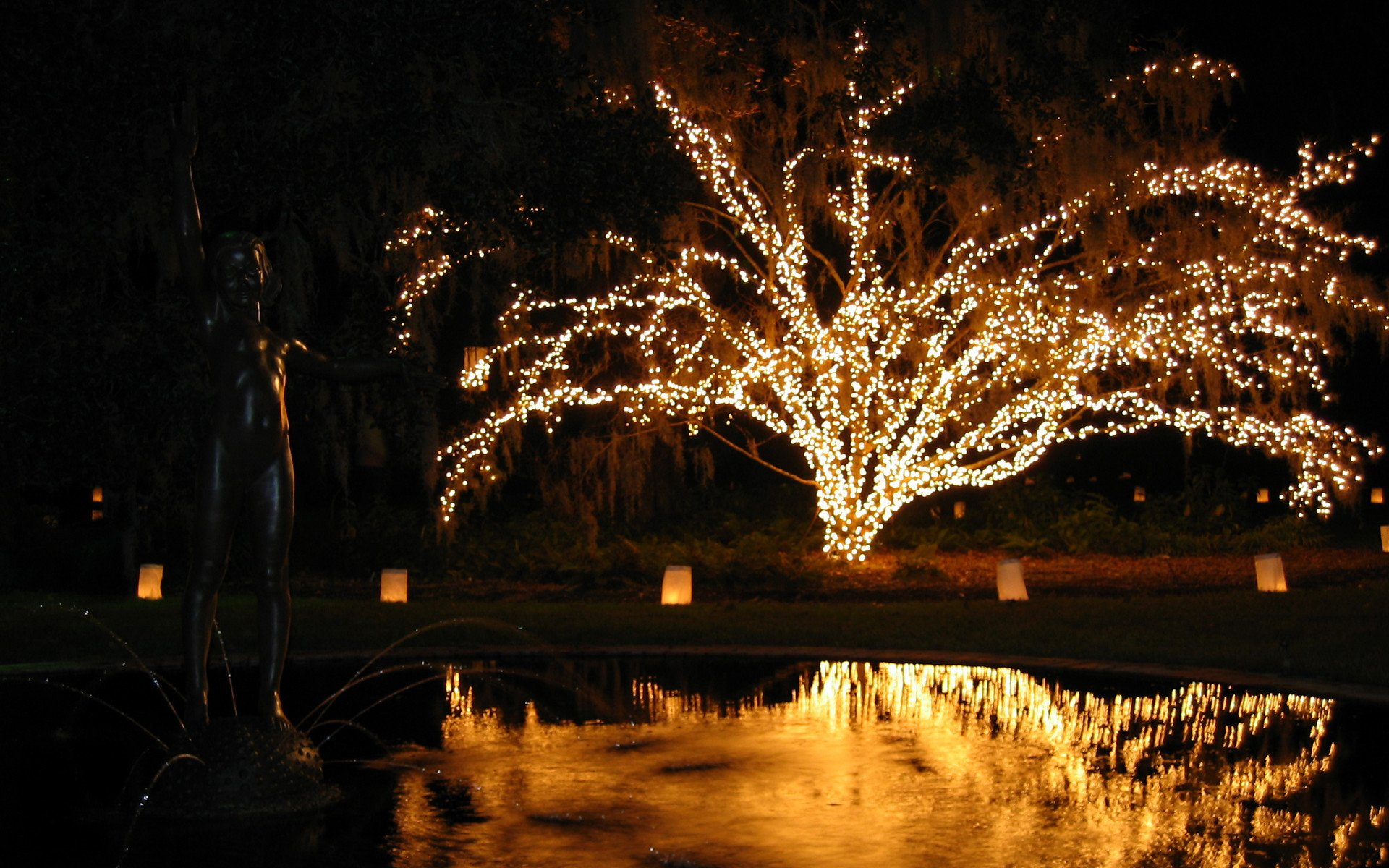 Christmas Lights in South Carolina 2020 - Best Time