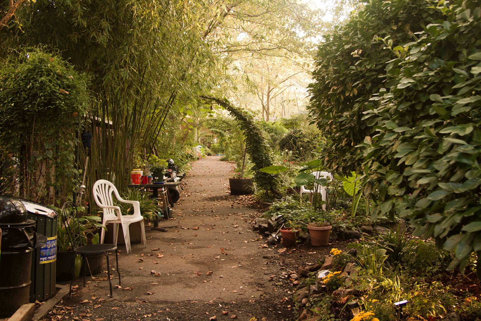 Secret Gardens in New York - Best Season 2020