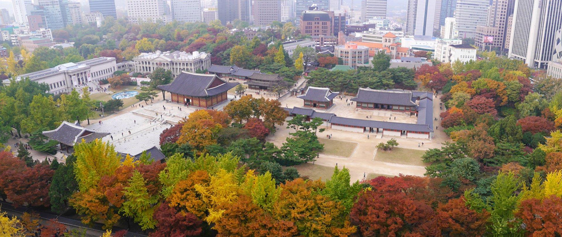 Autumn in Seoul - Best Season 2020