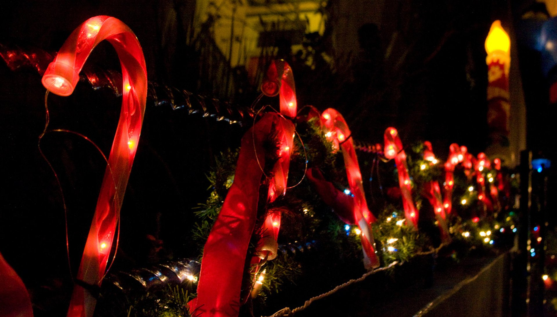 Christmas Lights 2019 In San Francisco Dates Map
