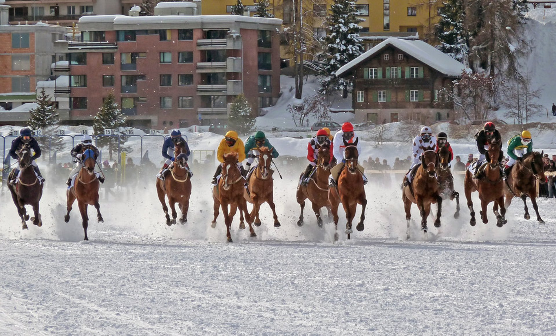 White Turf St. Moritz in Switzerland 2019 - Best Time