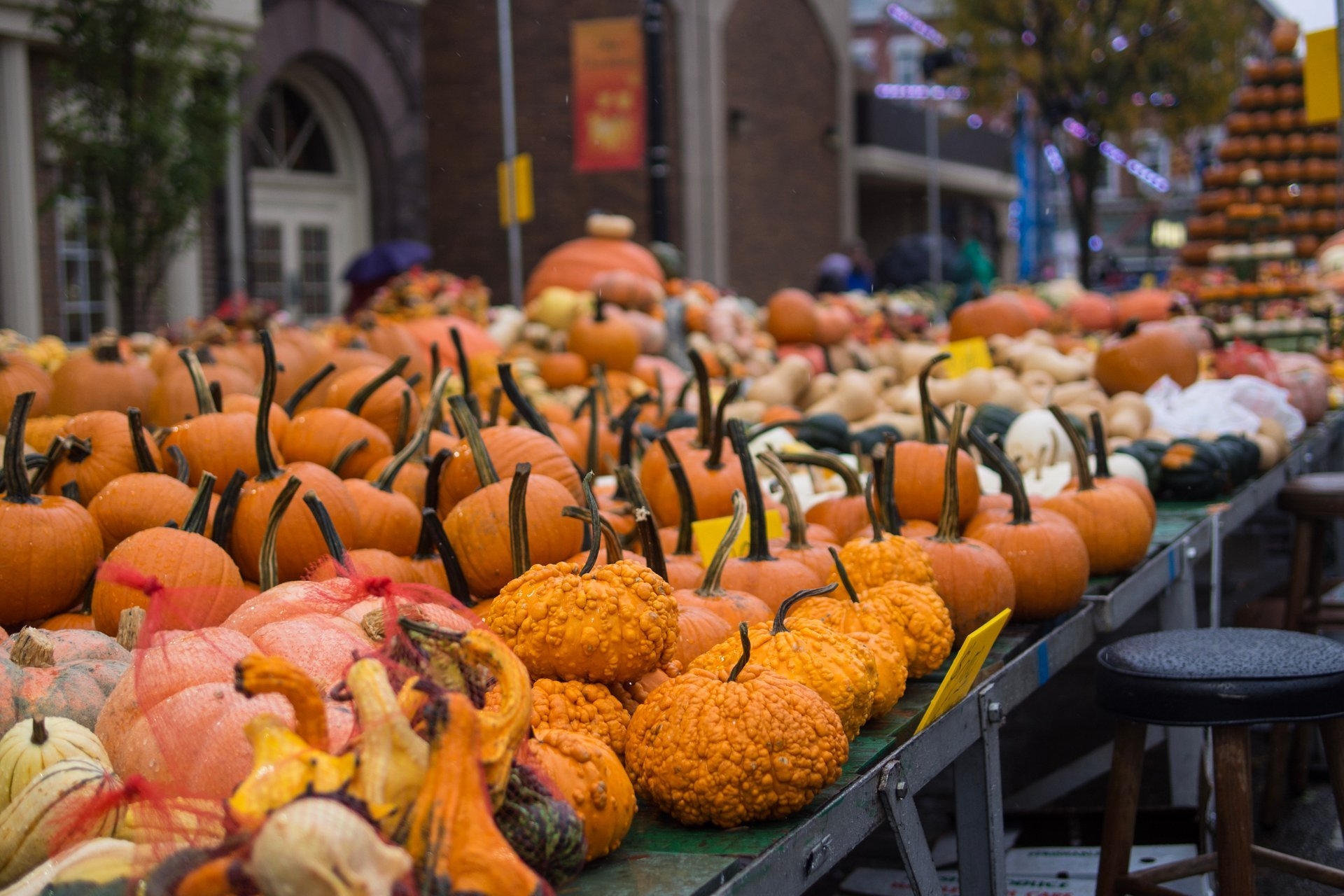 Best time for Circleville Pumpkin Show in Ohio 2020