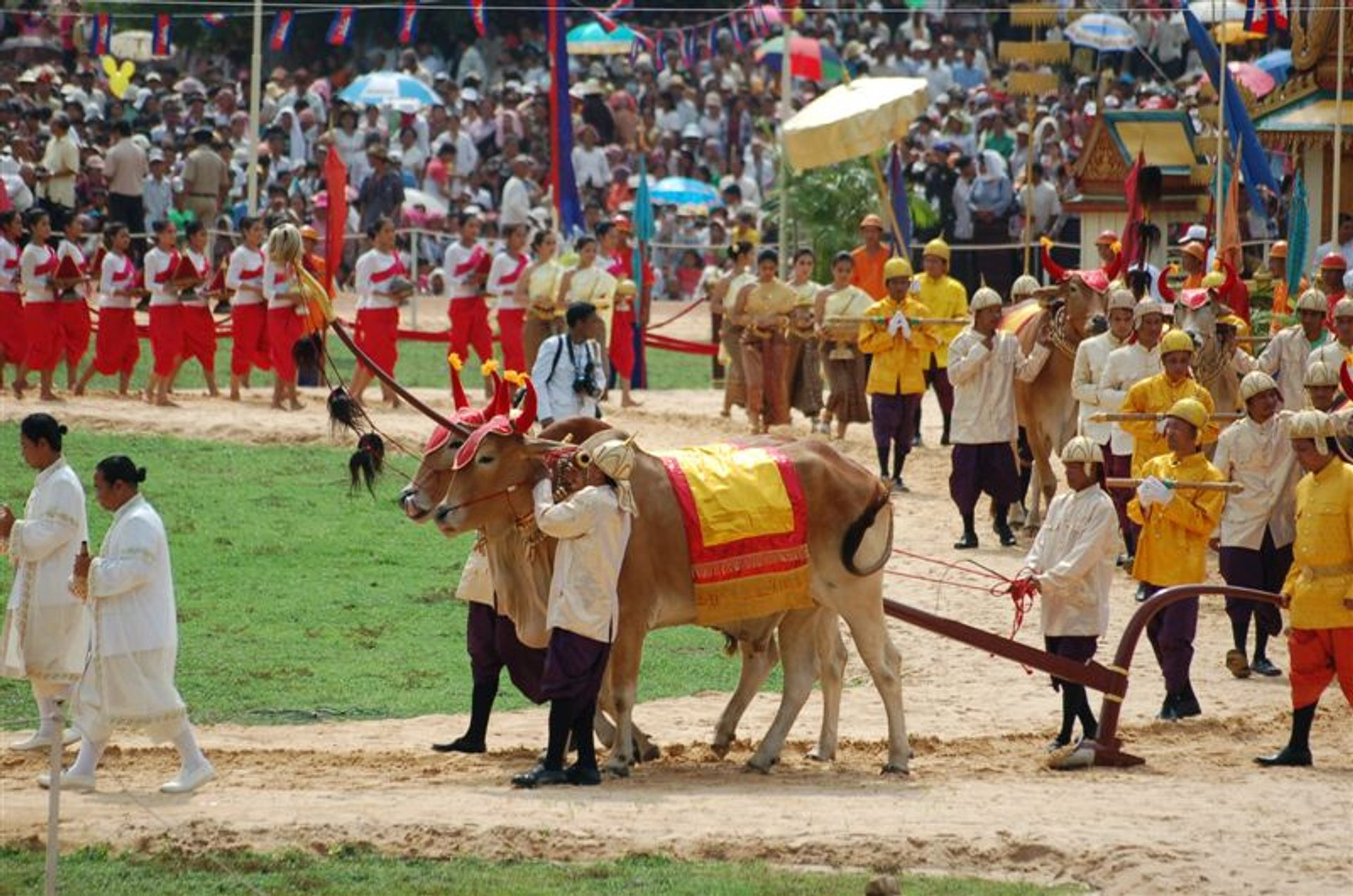 Royal Ploughing Day in Cambodia 2020 - Best Time