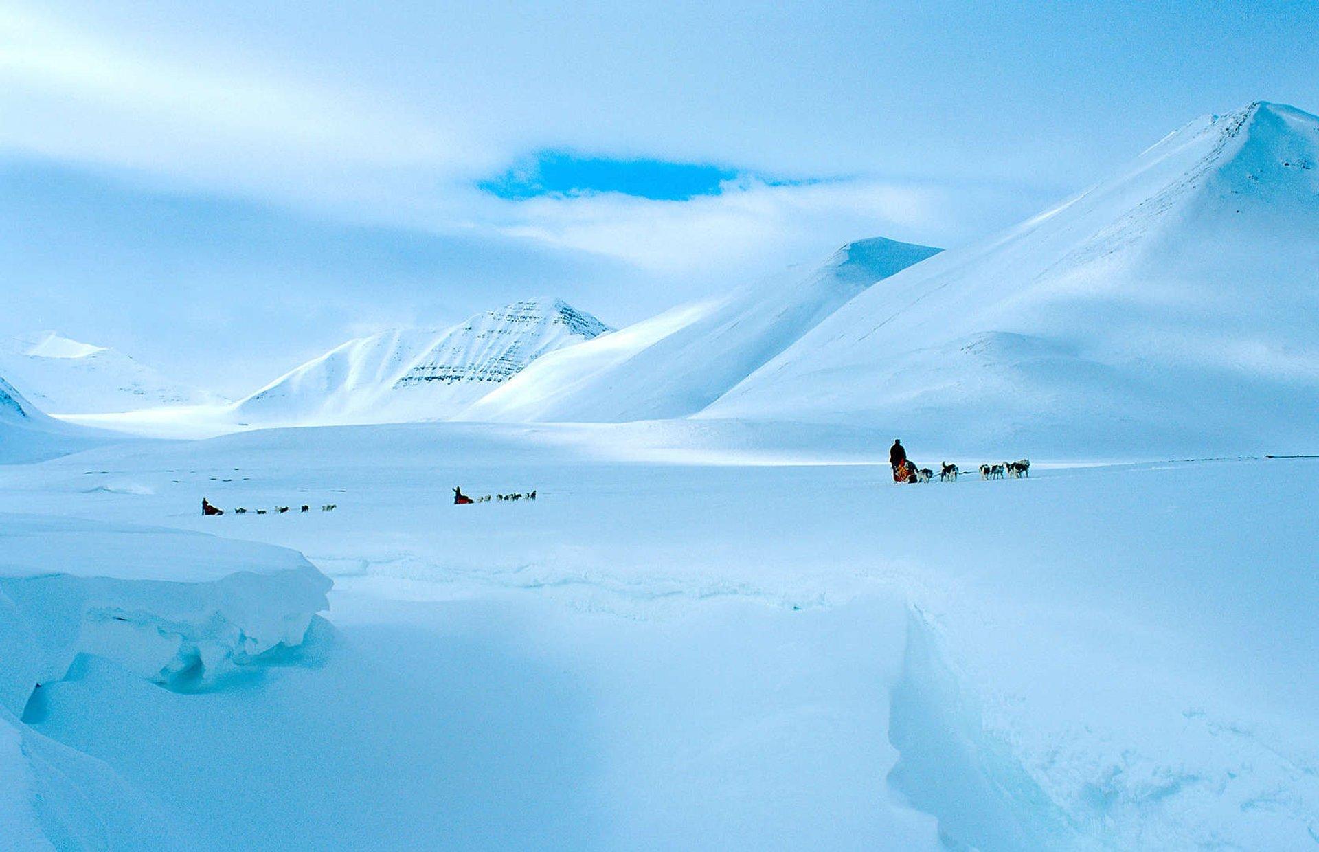 Best time for Dog Sledding in Svalbard 2020