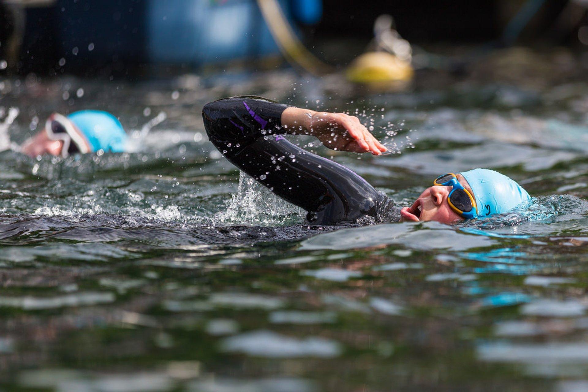 TrygFonden Christiansborg Rundt Copenhagen Swim in Copenhagen 2020 - Best Time