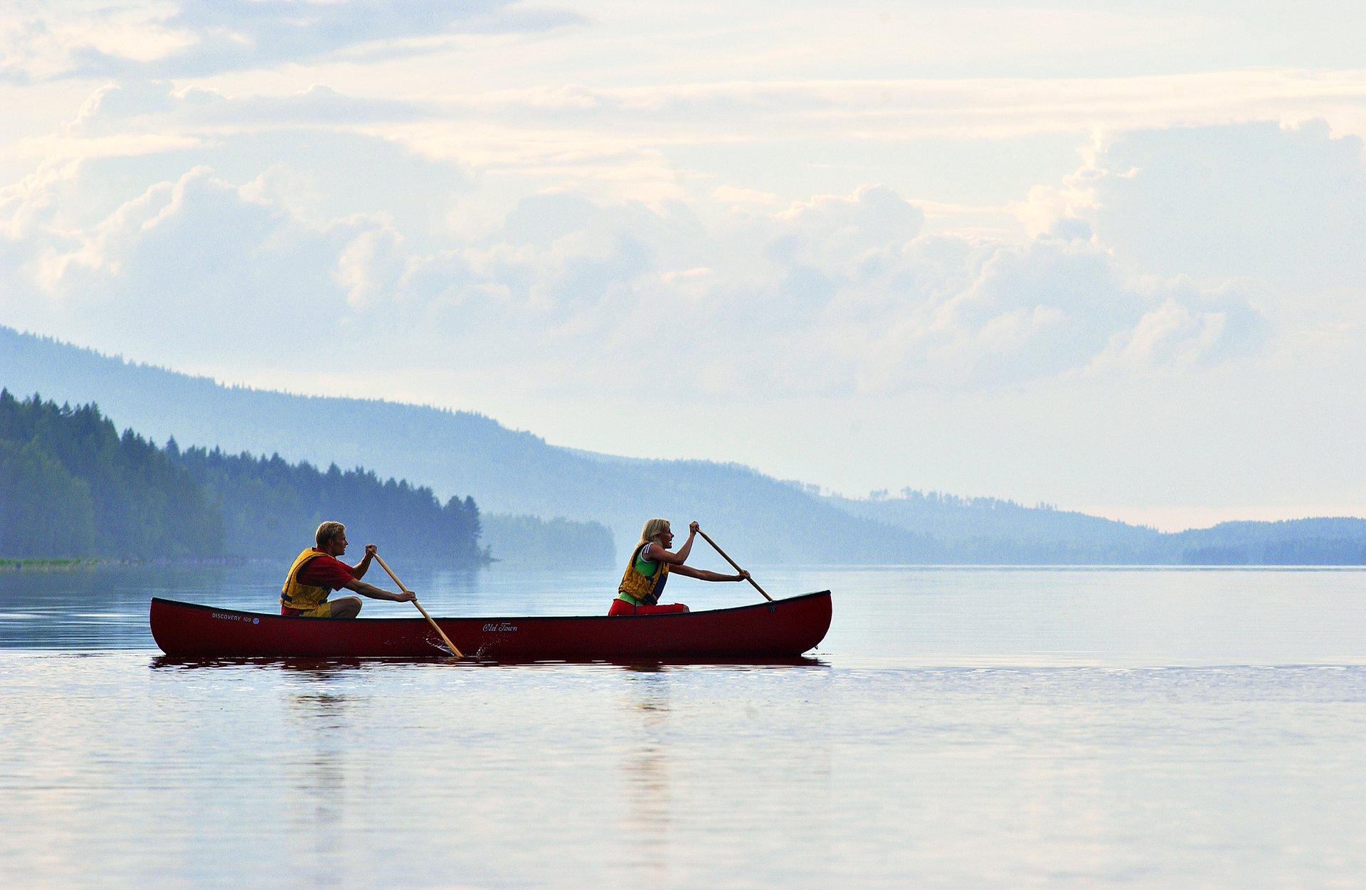 Pielinen Lake  2019