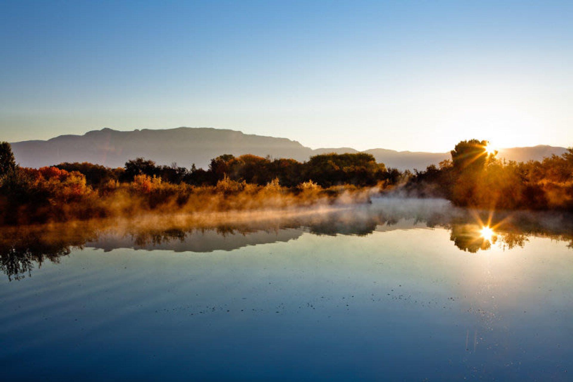 Alameda Wetlands preserve in the North Valley of Albuquerque 2020