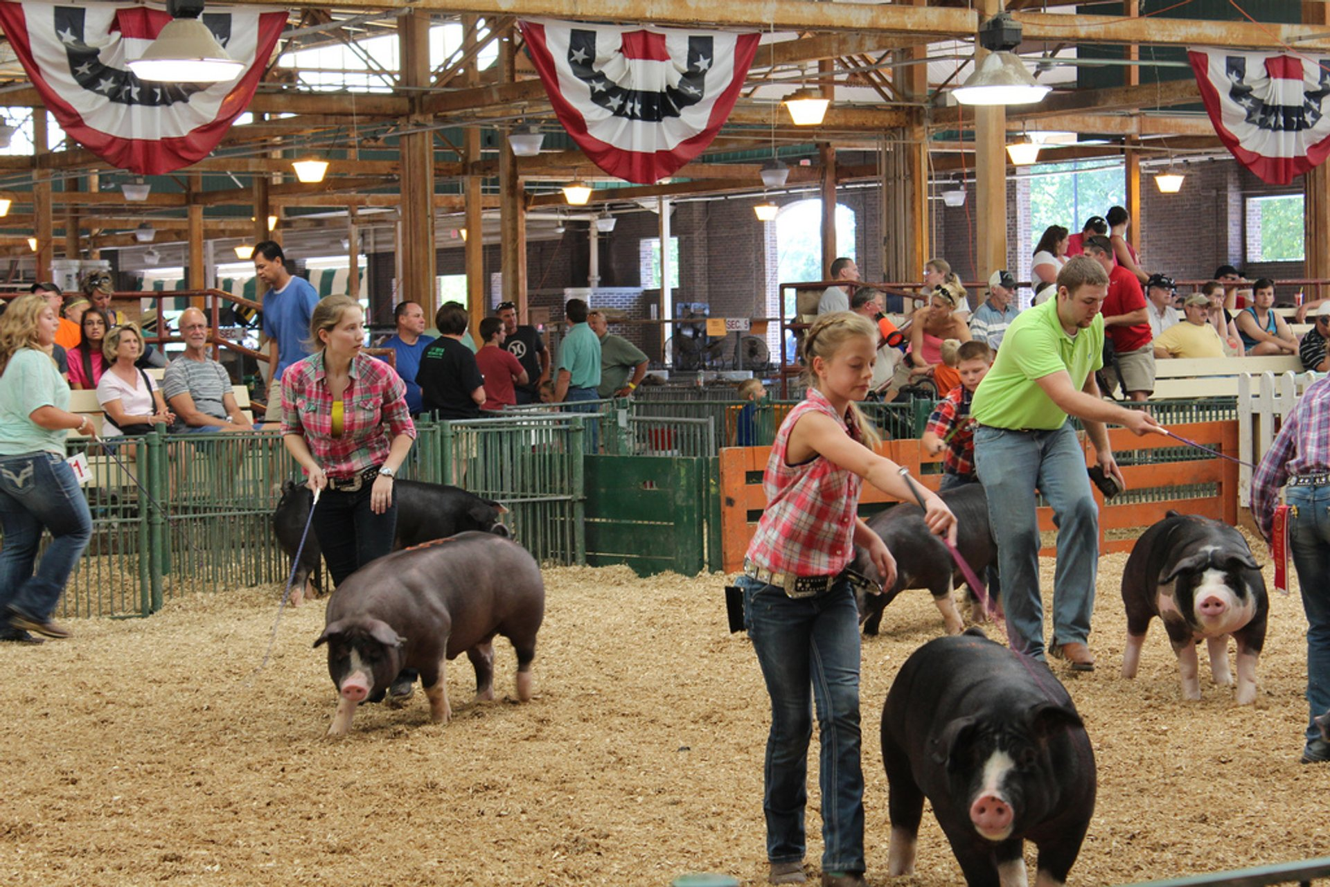 Best time to see Illinois State Fair 2019