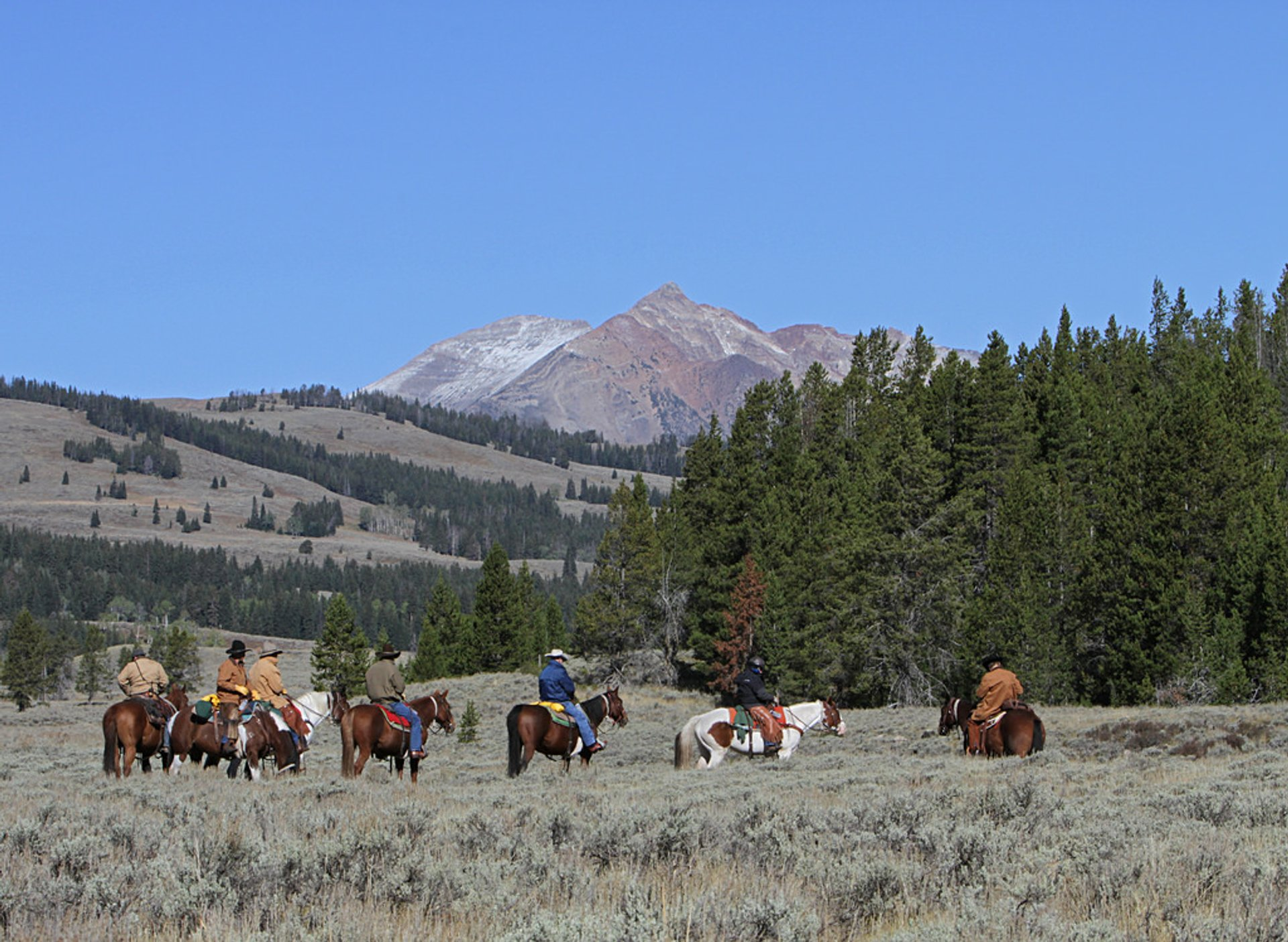 Horse trip heading out from Glen Creek trailhead, Yellowstone National Park, Wyoming, USA 2020