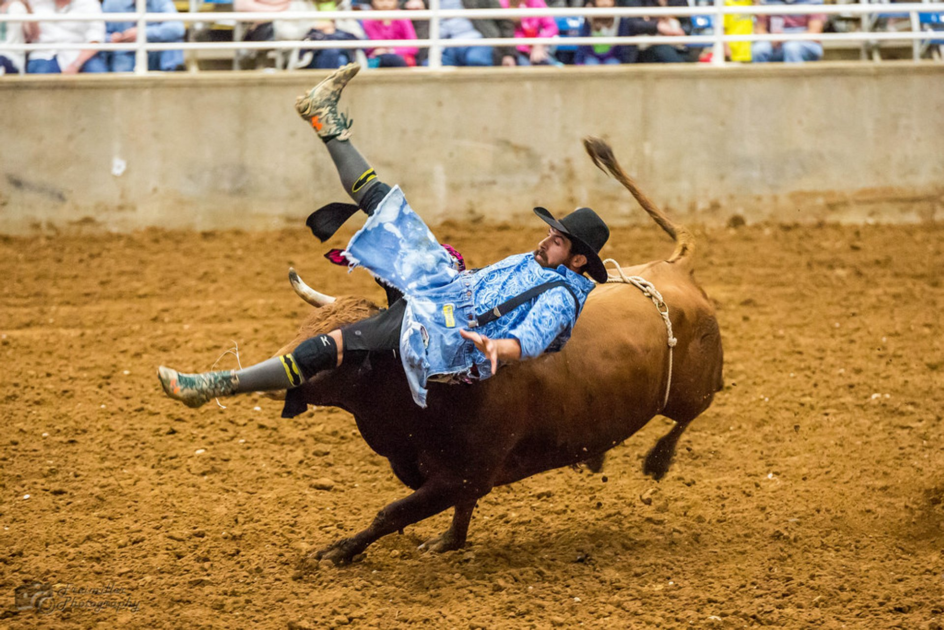 Rodeo in Texas 2019 - Best Time