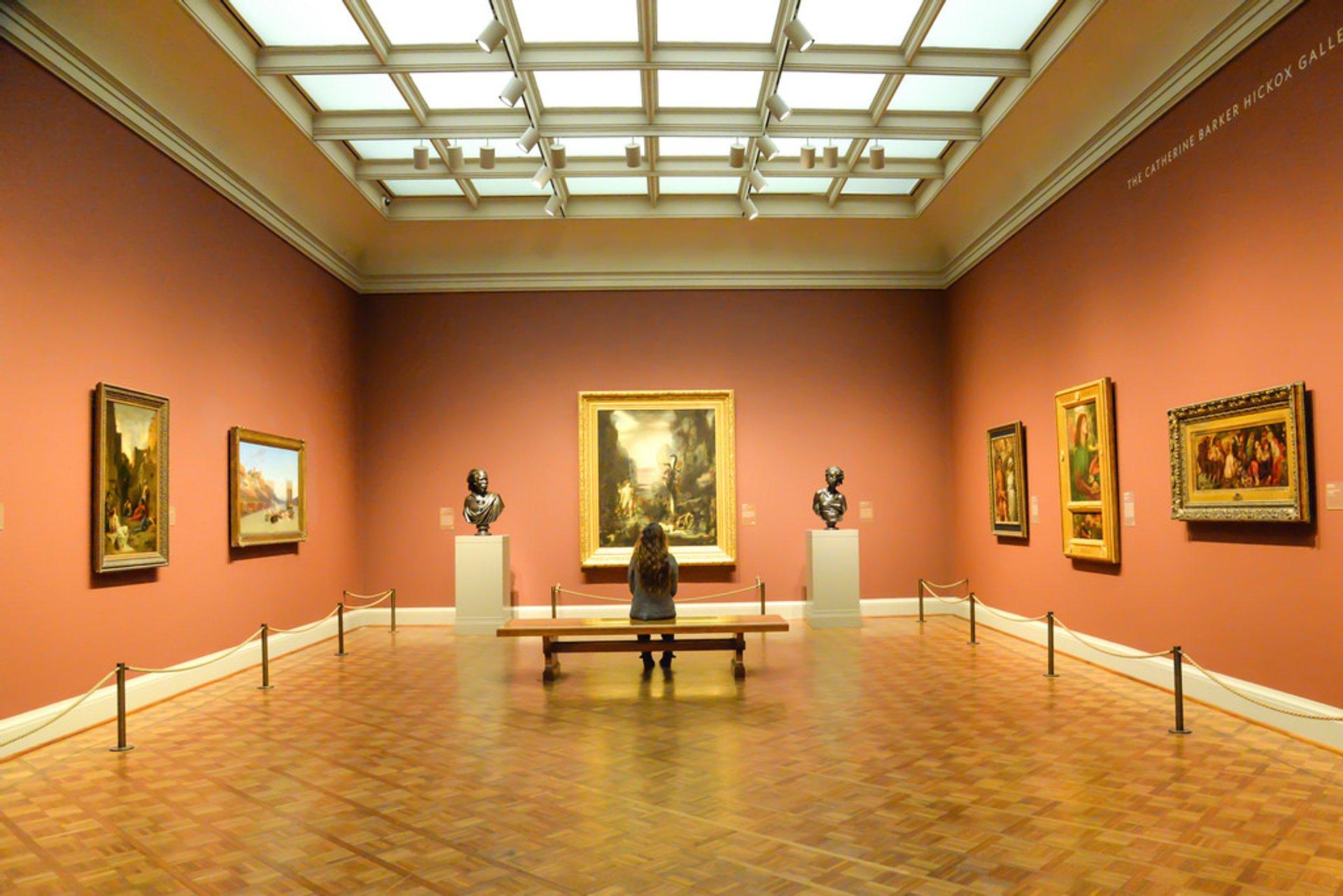 Art Institute of Chicago 2020