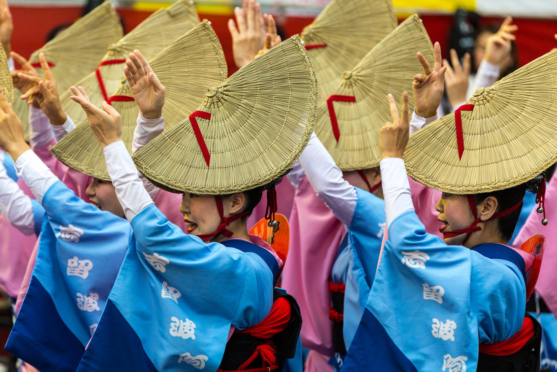 Awa Odori Matsuri 2020