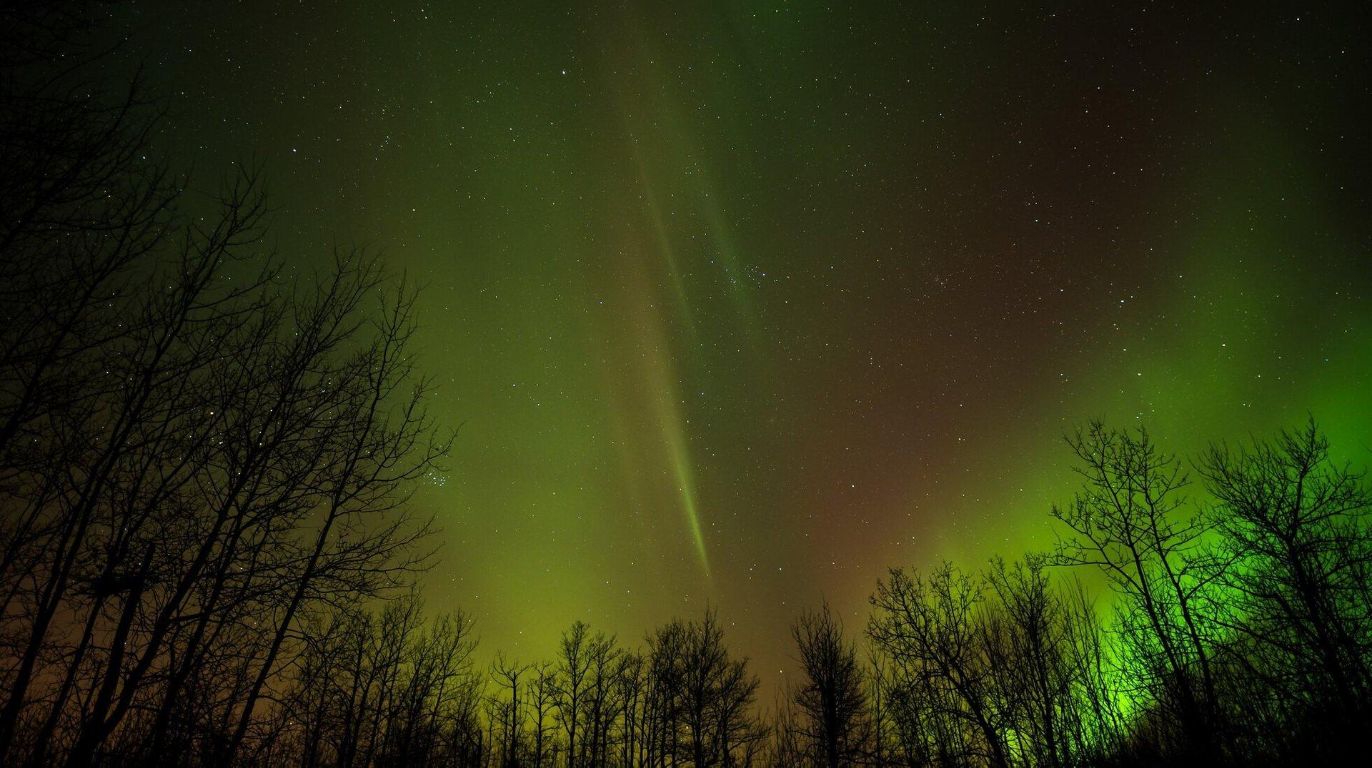 Northern Lights in Edmonton - Best Season 2020