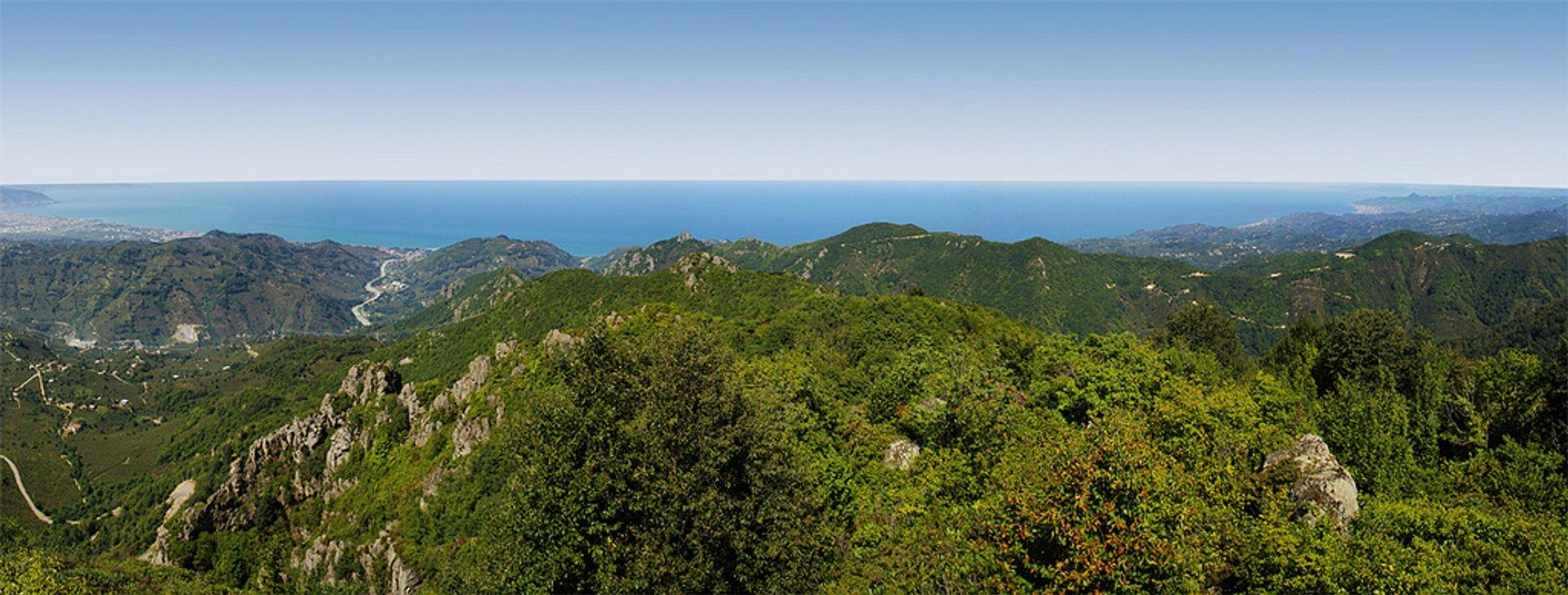 Black Sea coast near Ordu, Turkey 2020