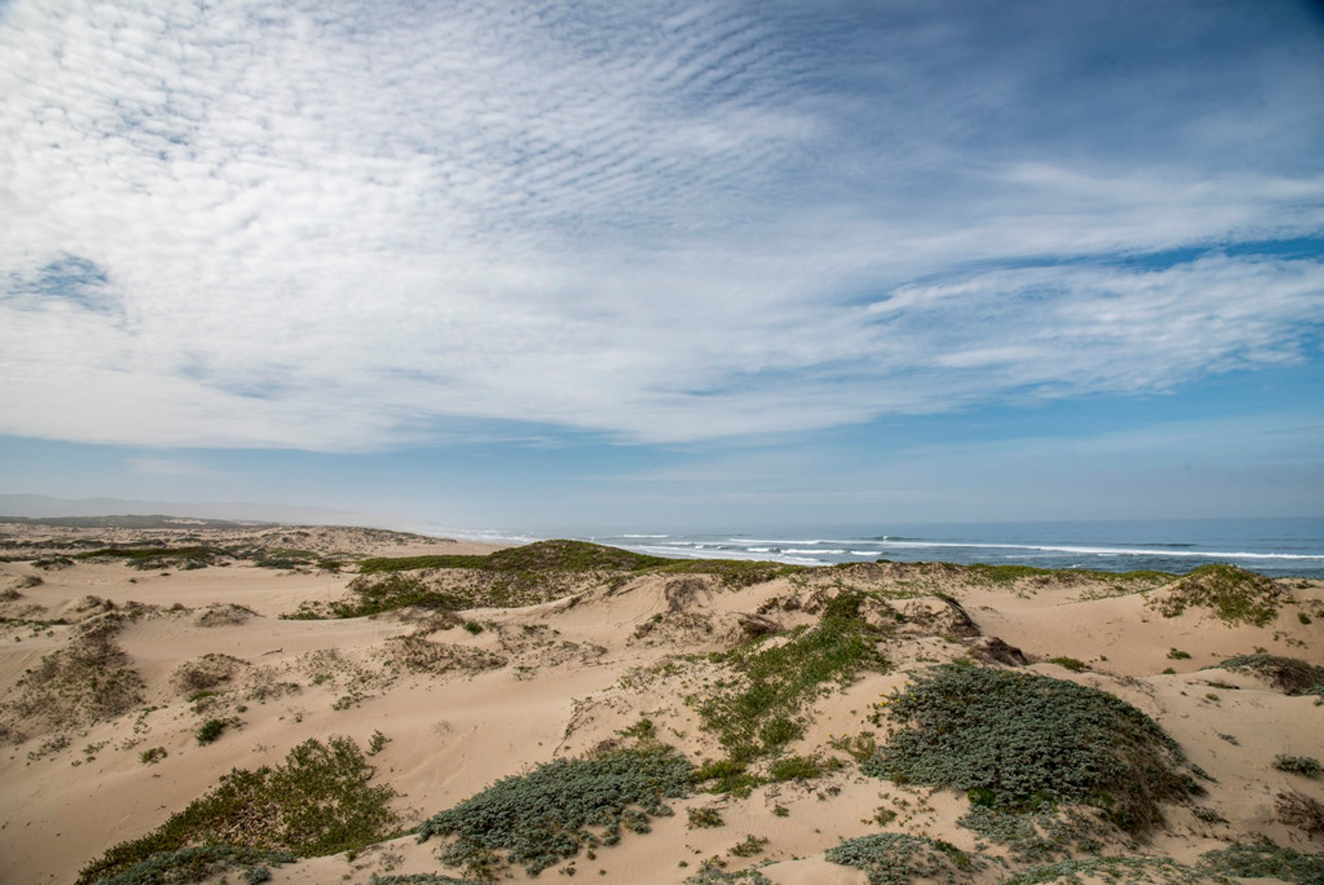 Best time to see Guadalupe-Nipomo Dunes in California 2020