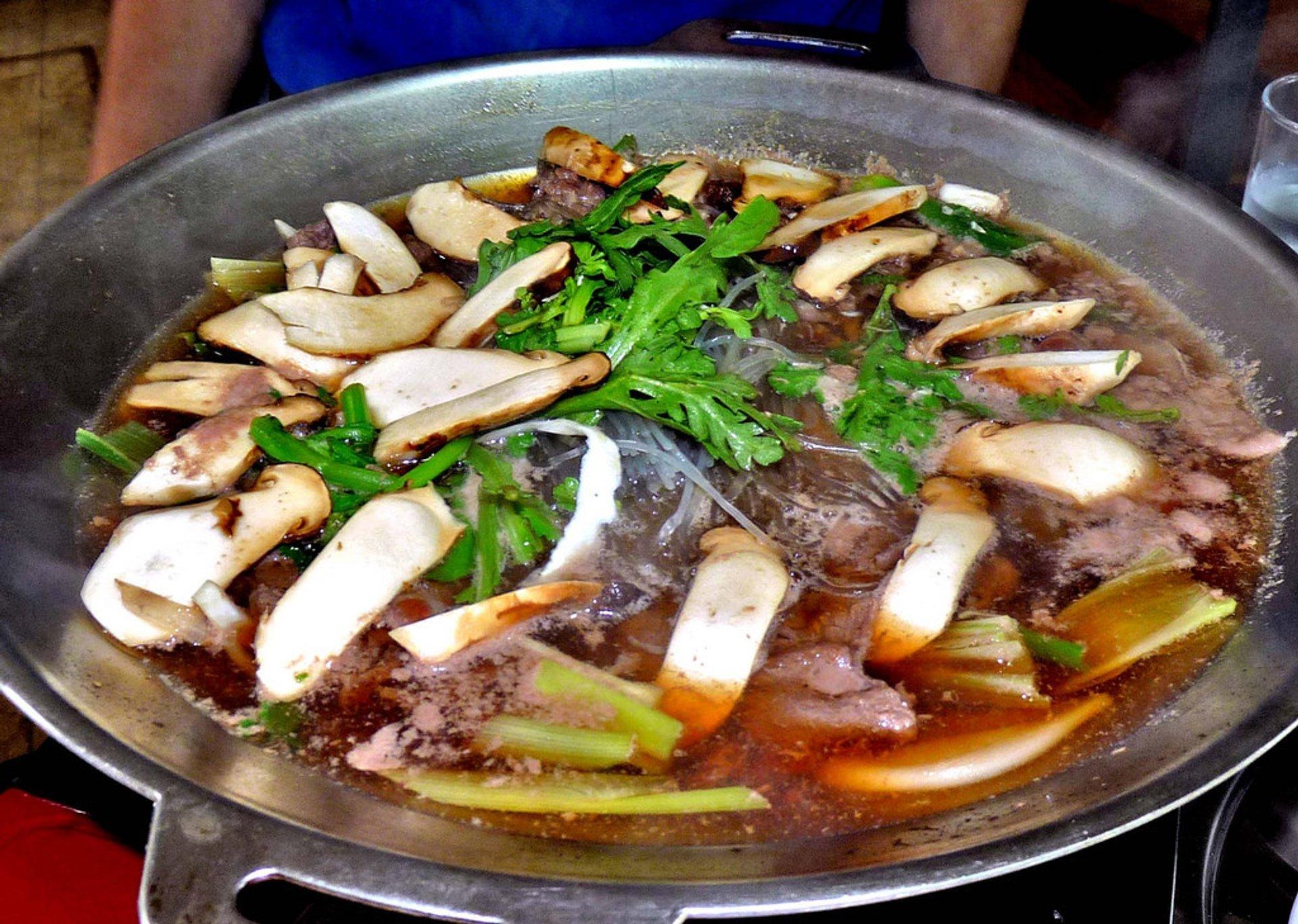 Pine Mushrooms (Songi) in South Korea - Best Time