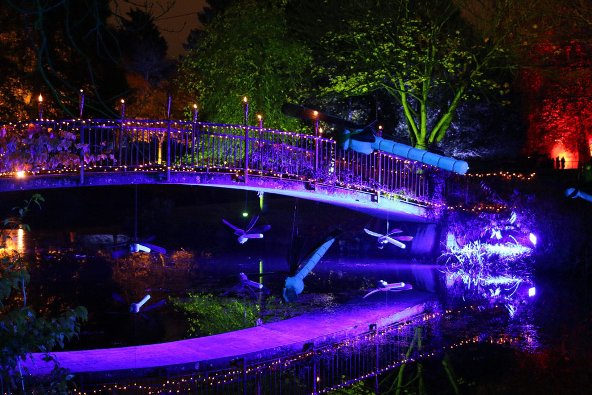 Best time for Enchanted Woodland at Syon Park in London 2020