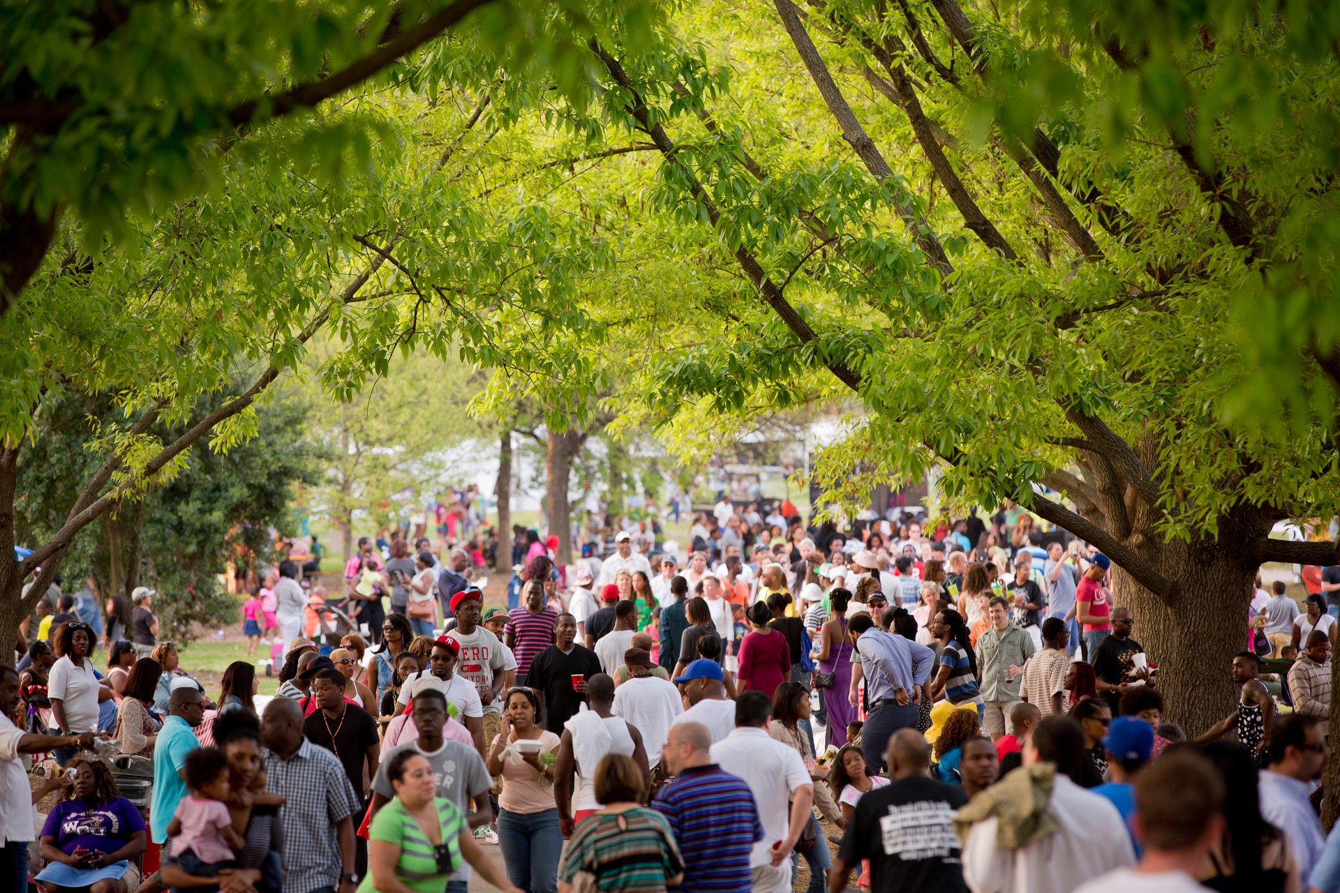 Best time to see Atlanta Dogwood Festival 2020