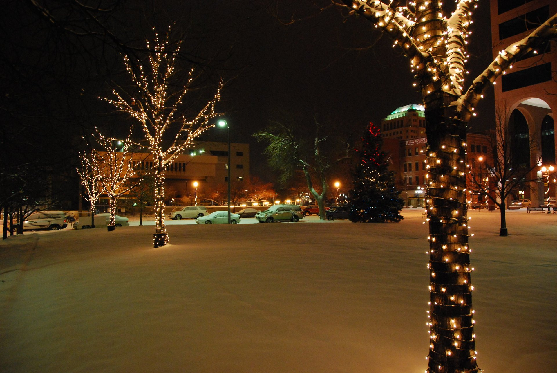 Christmas Events In Colorado Springs 2021 Christmas Lights 2020 In Colorado Springs Co Dates