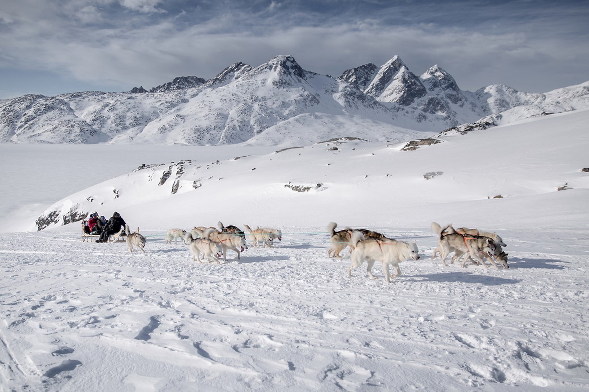Dog Sledding in Greenland - Best Season 2020