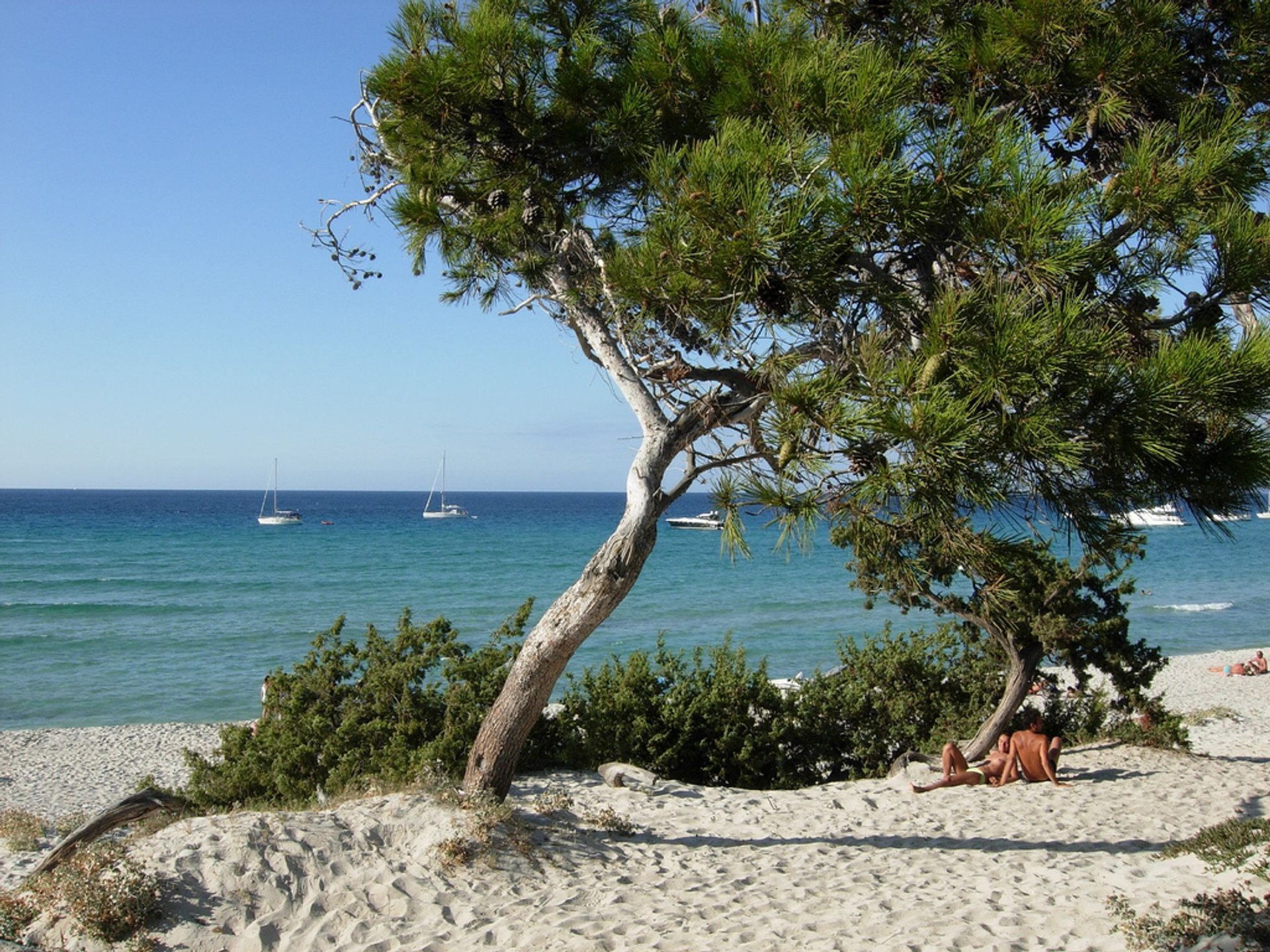 Best time to see Secret Hideaways in Corsica 2020