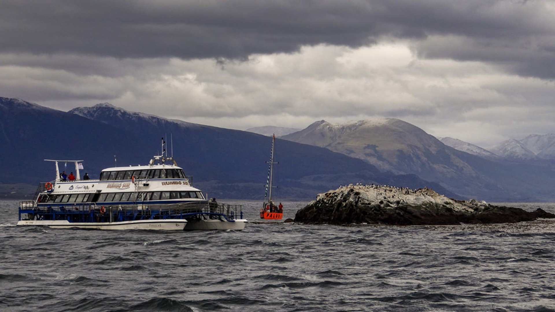 Beagle Channel Cruise 2020