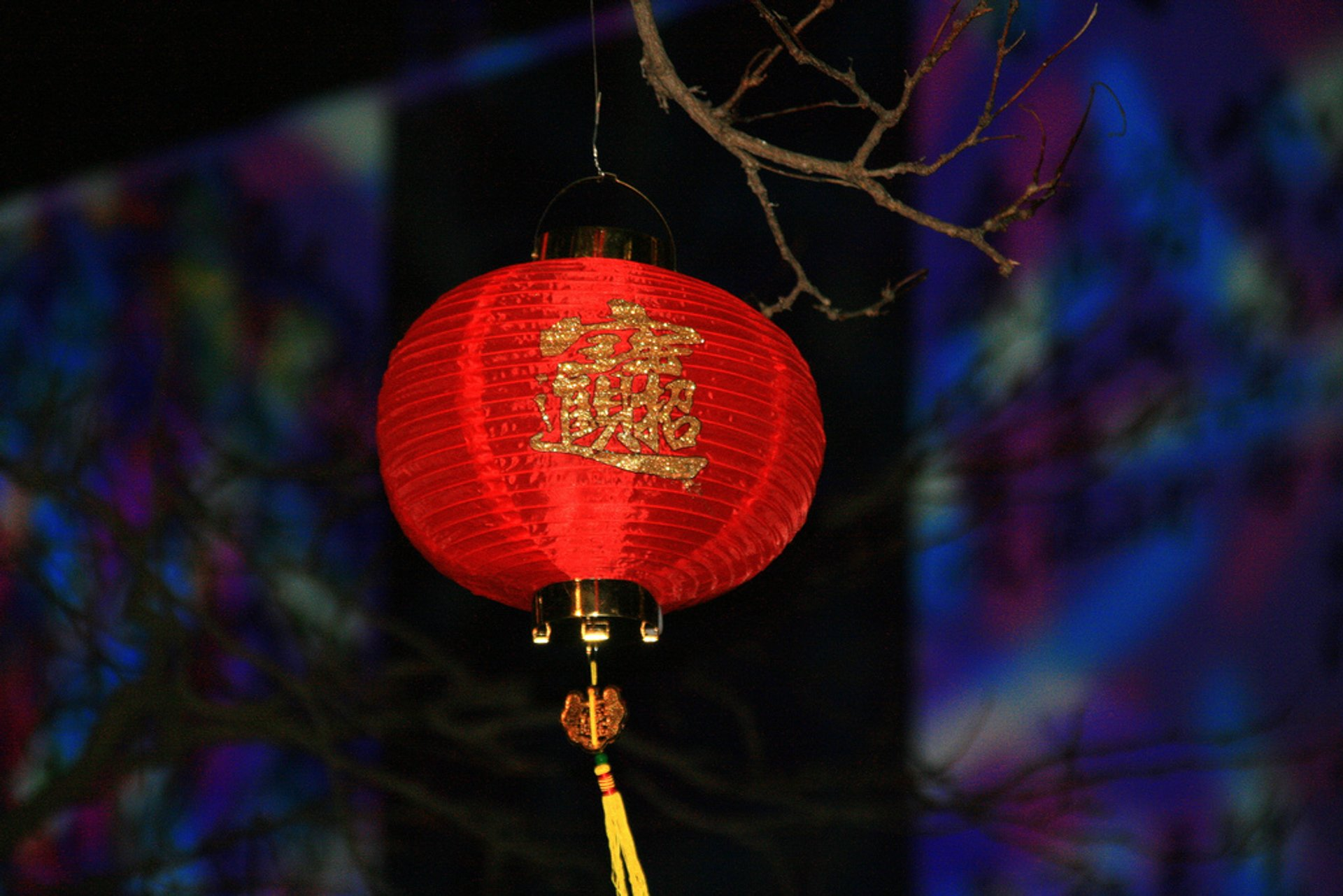 Chinese New Year in Toronto - Best Season 2020