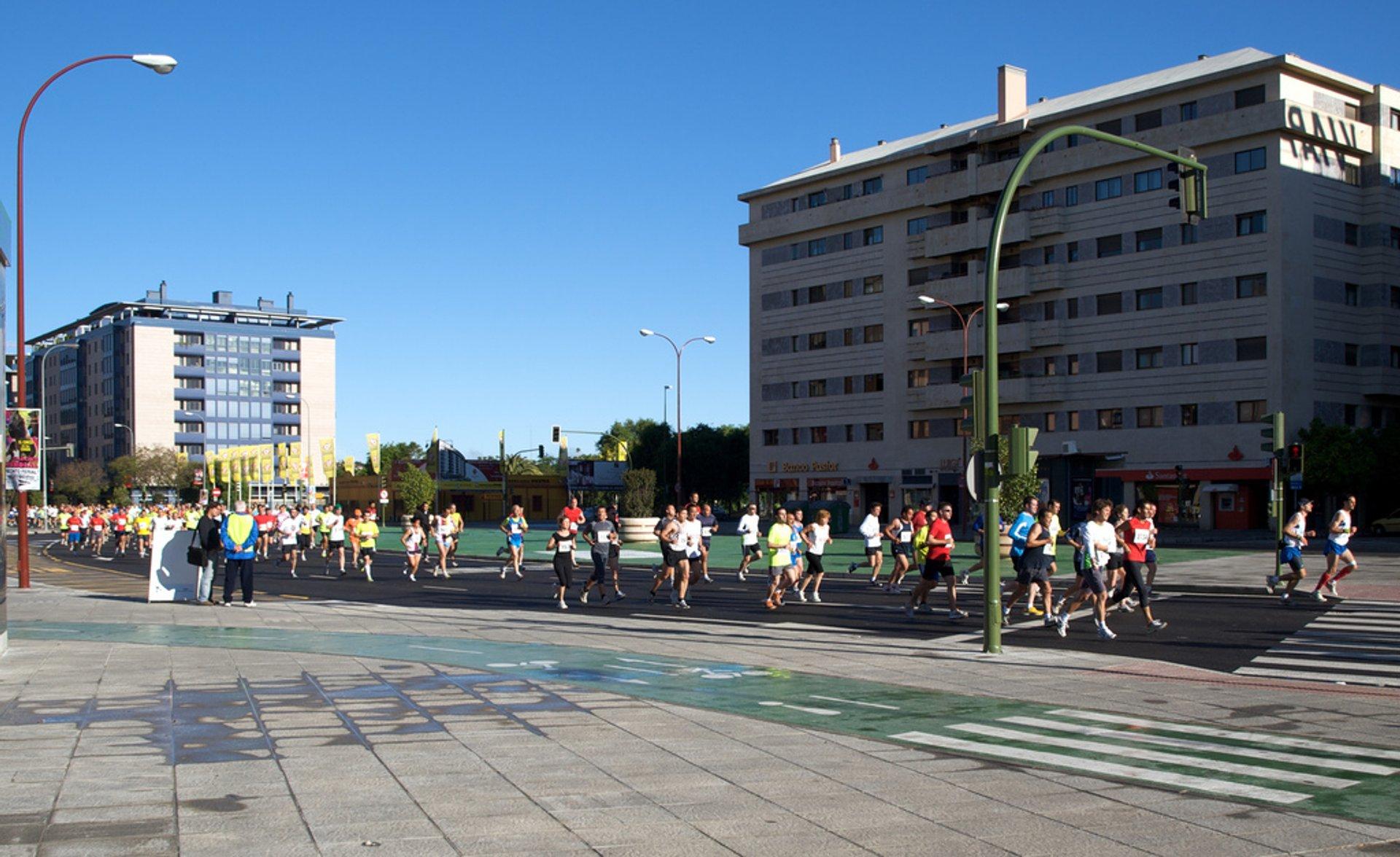 Seville Marathon (Zurich Maraton de Sevilla) in Seville - Best Season 2019