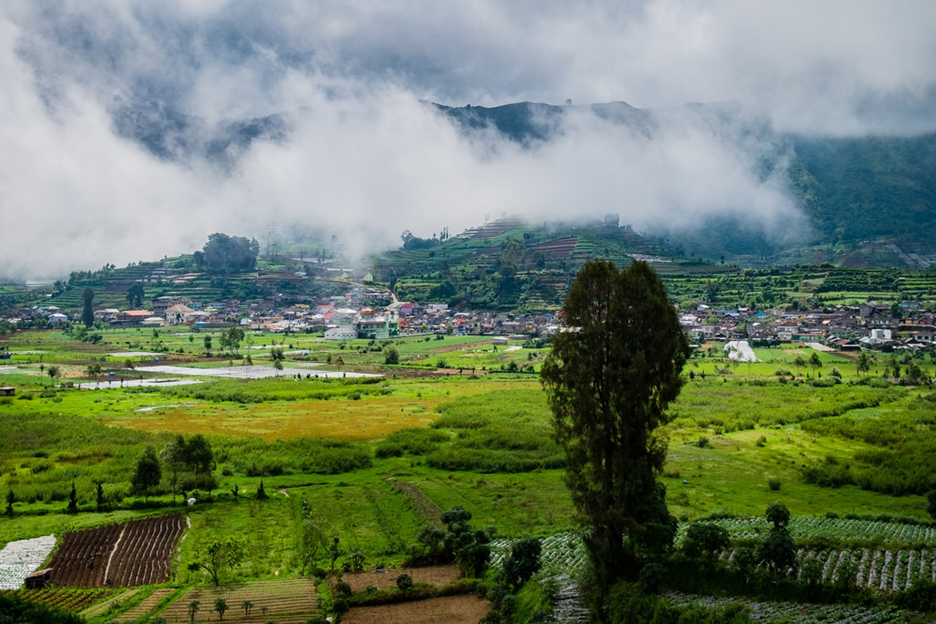 Dieng Plateau in Java 2019 - Best Time