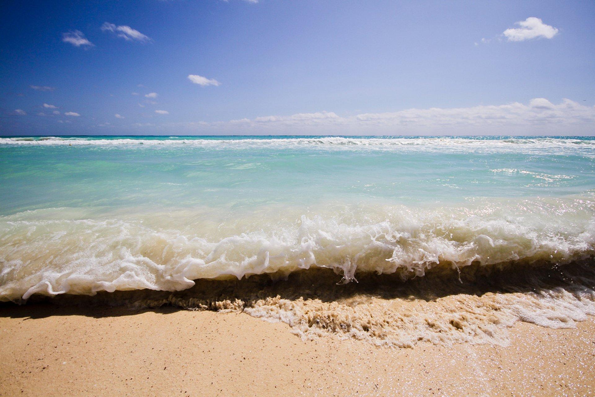 Playa Del Carmen 2020