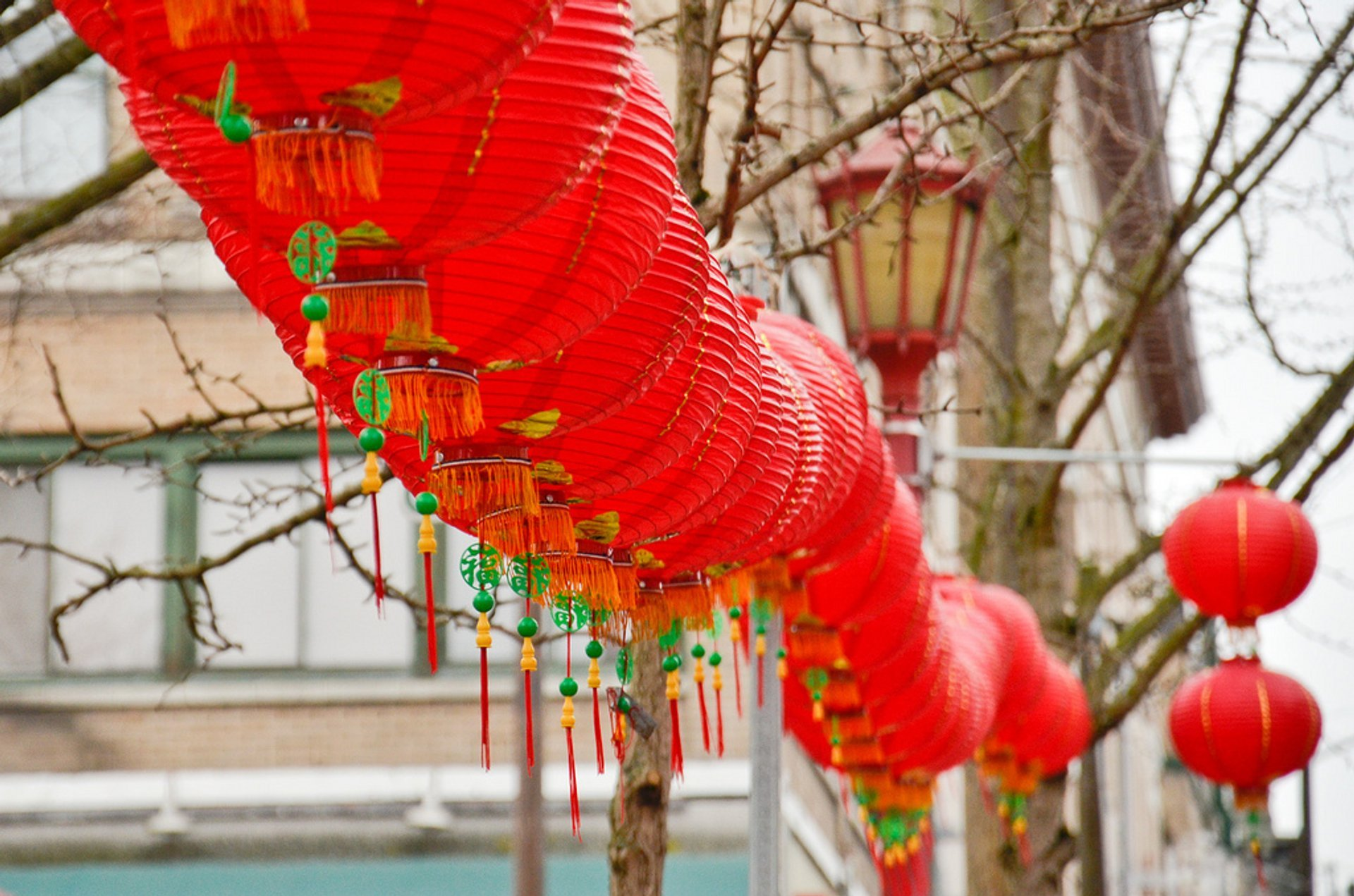 Chinese New Year in Seattle 2019 - Best Time
