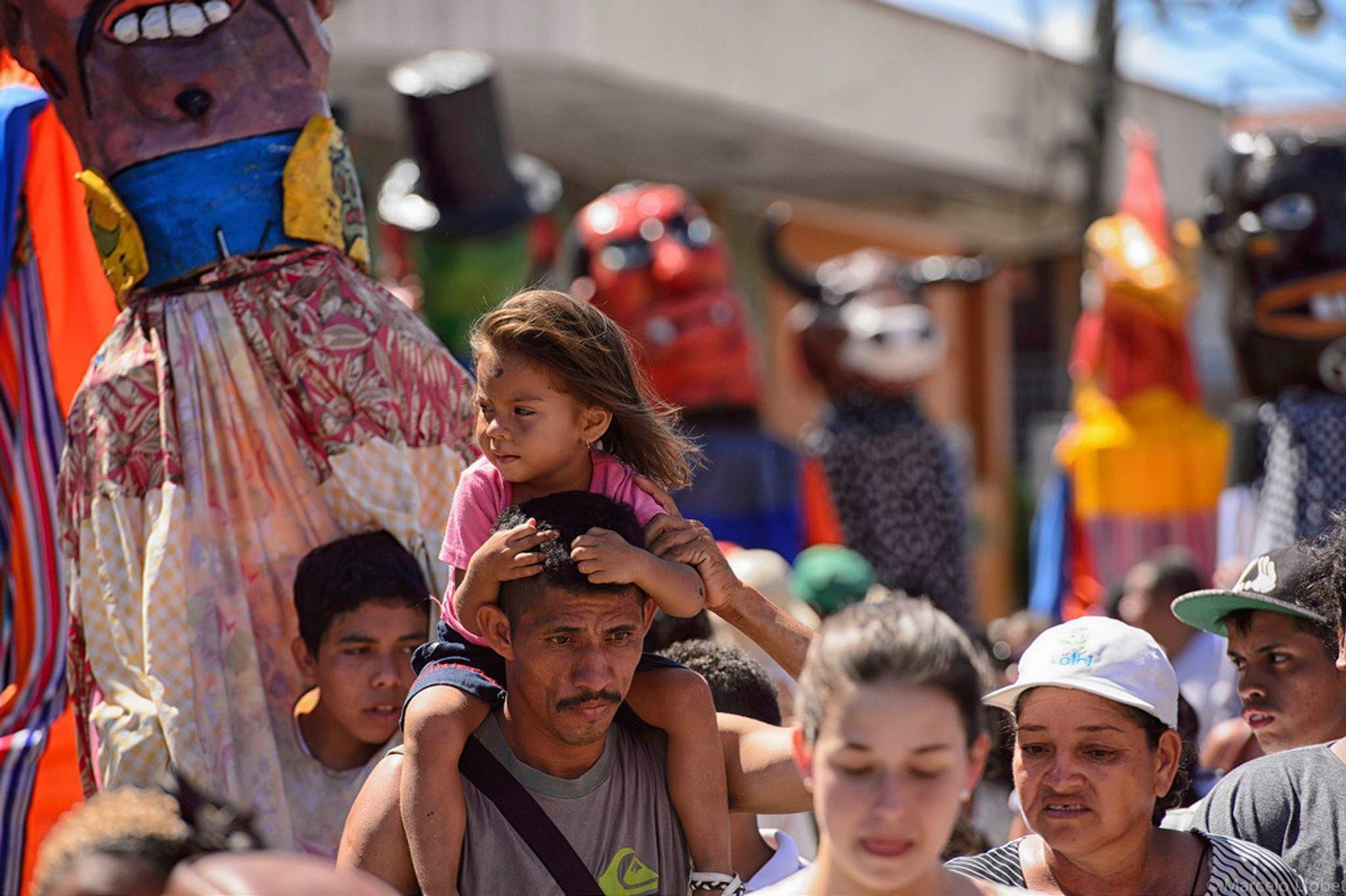 Fiestas Típicas Nacionales Santa Cruz in Costa Rica 2020 - Best Time