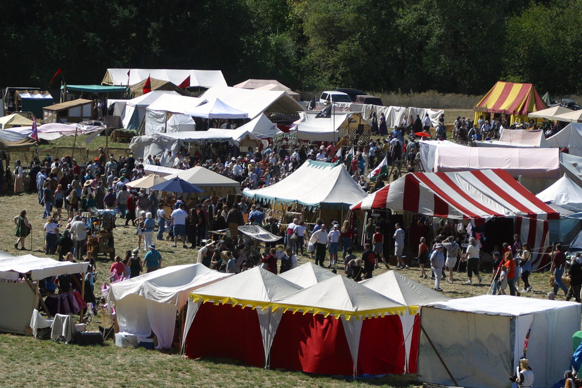 Best time to see Shrewsbury Renaissance Faire 2020