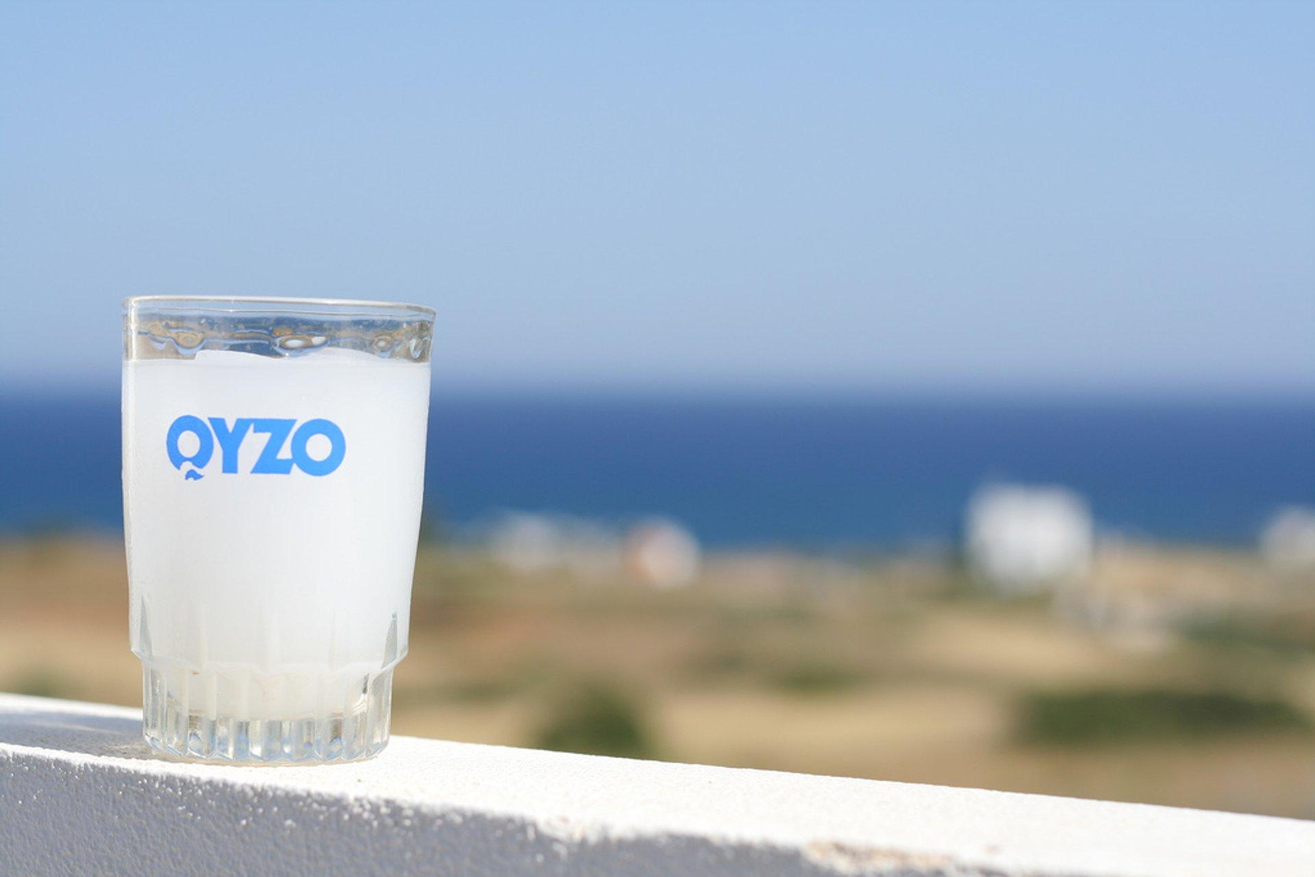 Ouzo & Tsipouro Preparation in Greece - Best Season 2020
