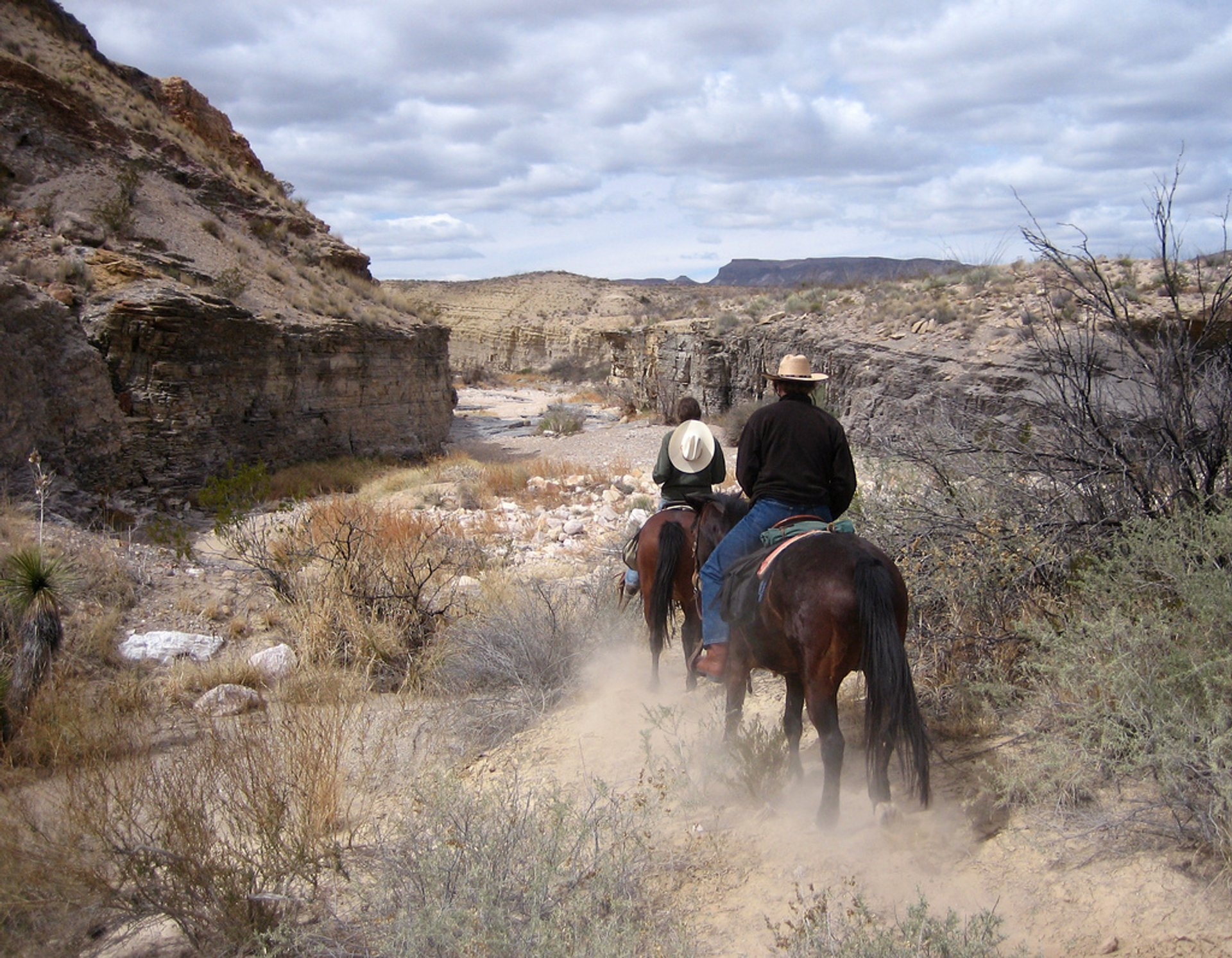 Horseback Riding in Texas 2020 - Best Time