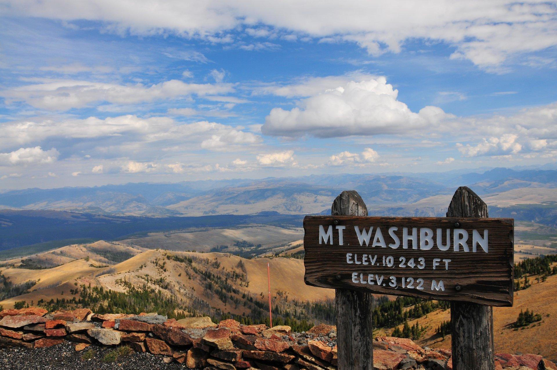 Mount Washburn 2020