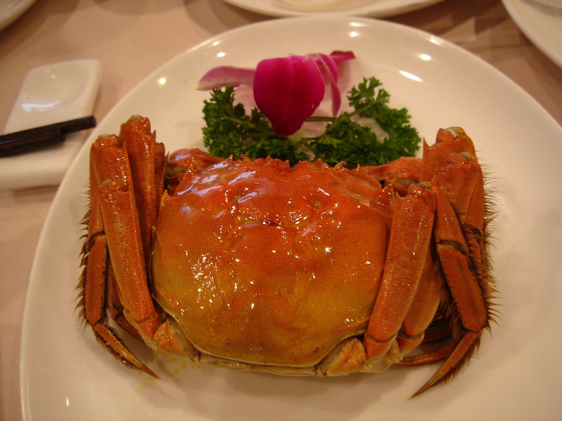 Hairy Crab in Hong Kong 2020 - Best Time
