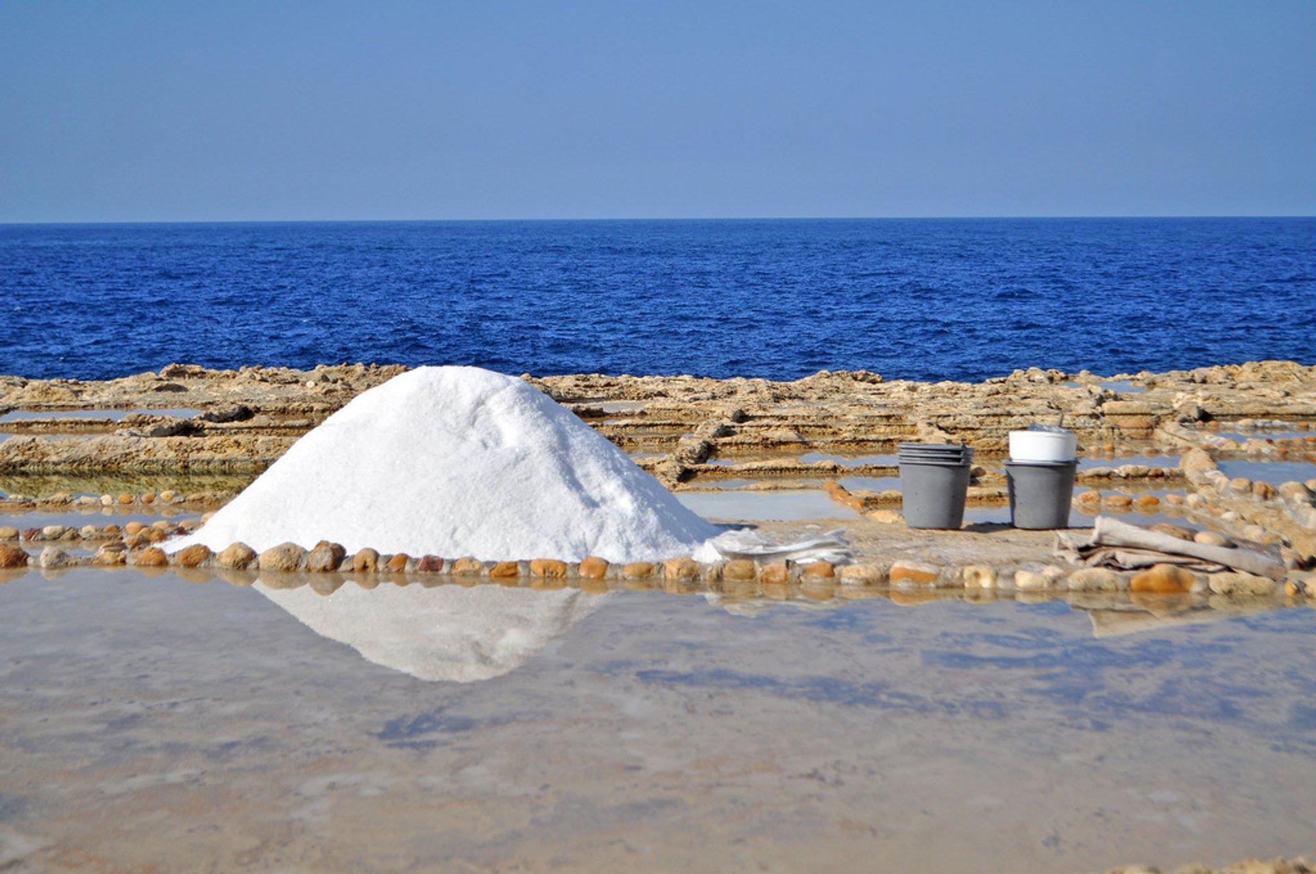 Sea salt on Gozo Island 2020