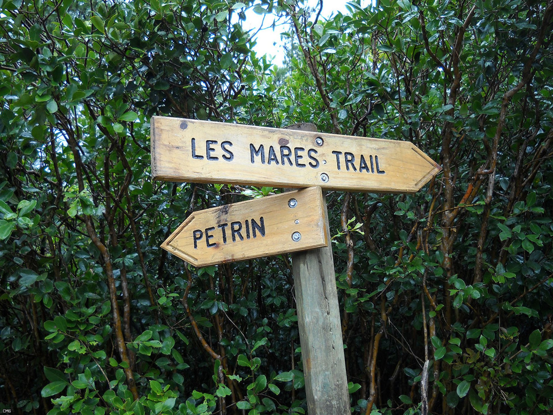 Hiking in Mauritius 2020 - Best Time