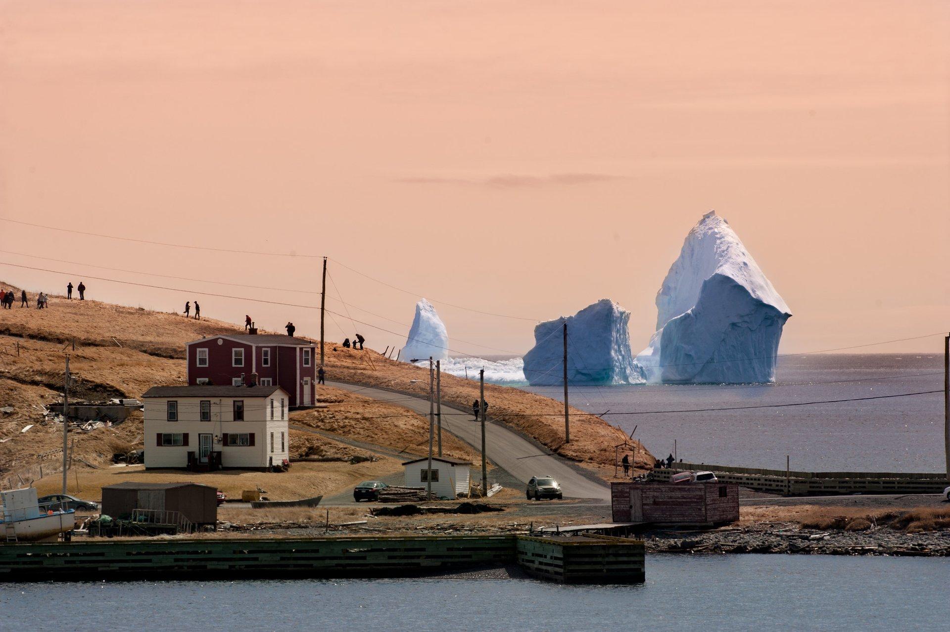 Large iceberg offshore near Ferryland, Newfoundland 2020