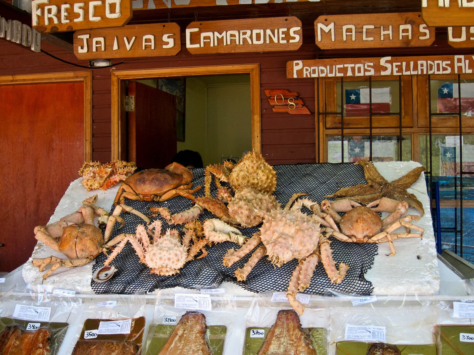 Centolla or King Crab in Chile - Best Season 2019